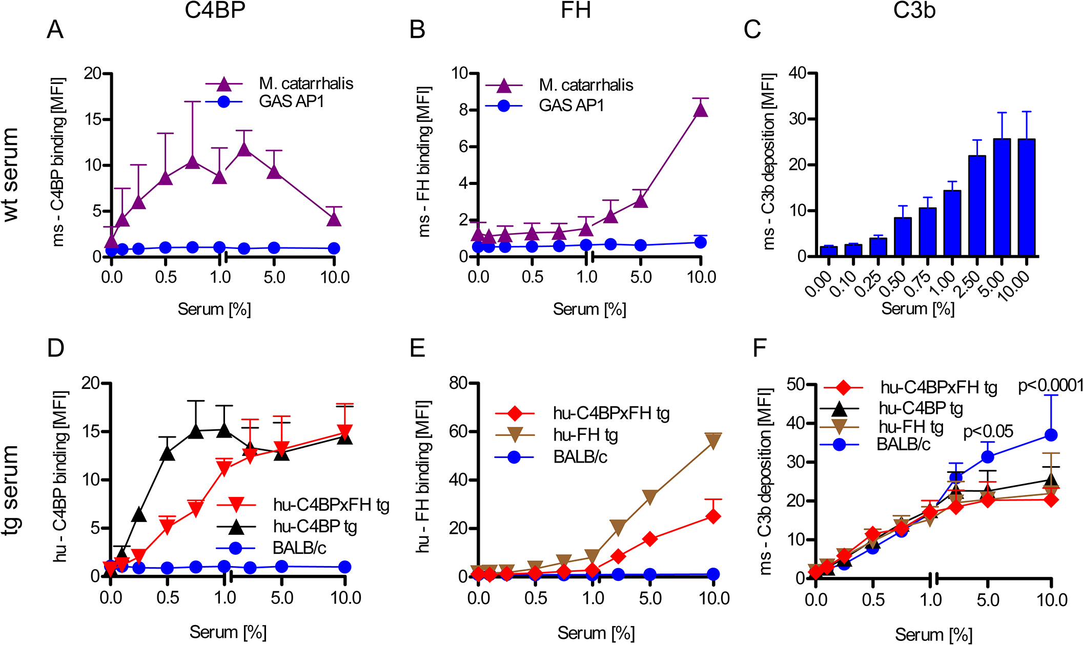 Human complement inhibitors decrease opsonization of GAS.