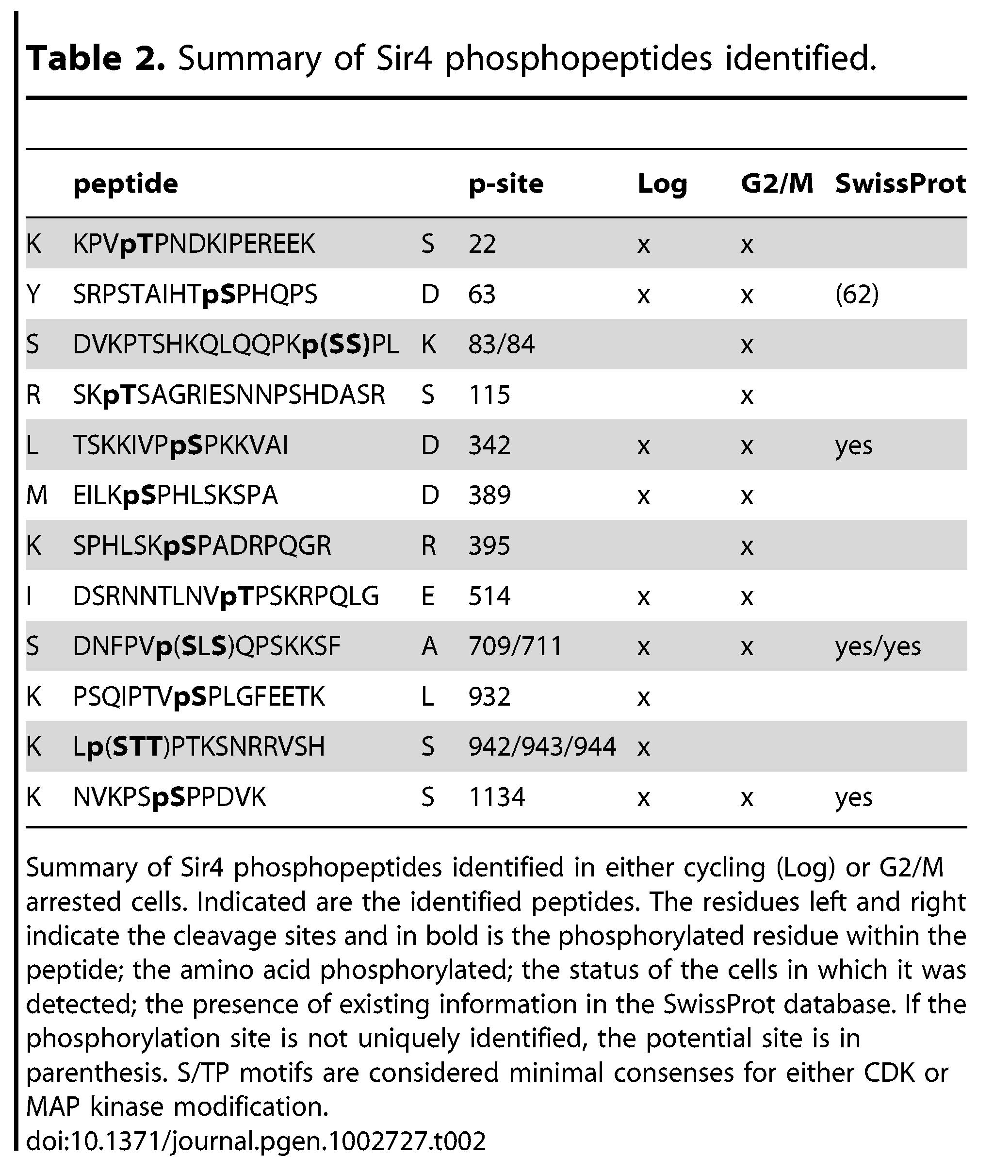 Summary of Sir4 phosphopeptides identified.