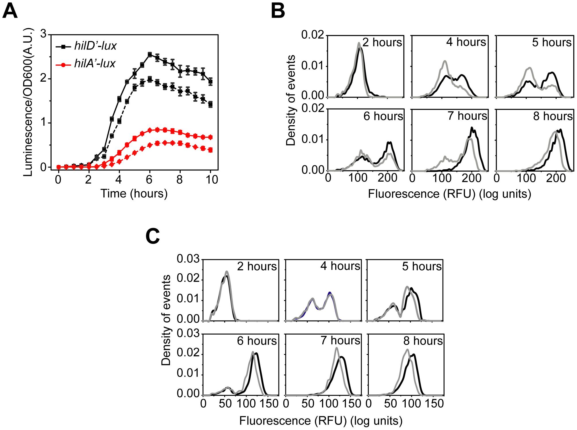 HilC and RtsA amplify SPI1 gene expression.
