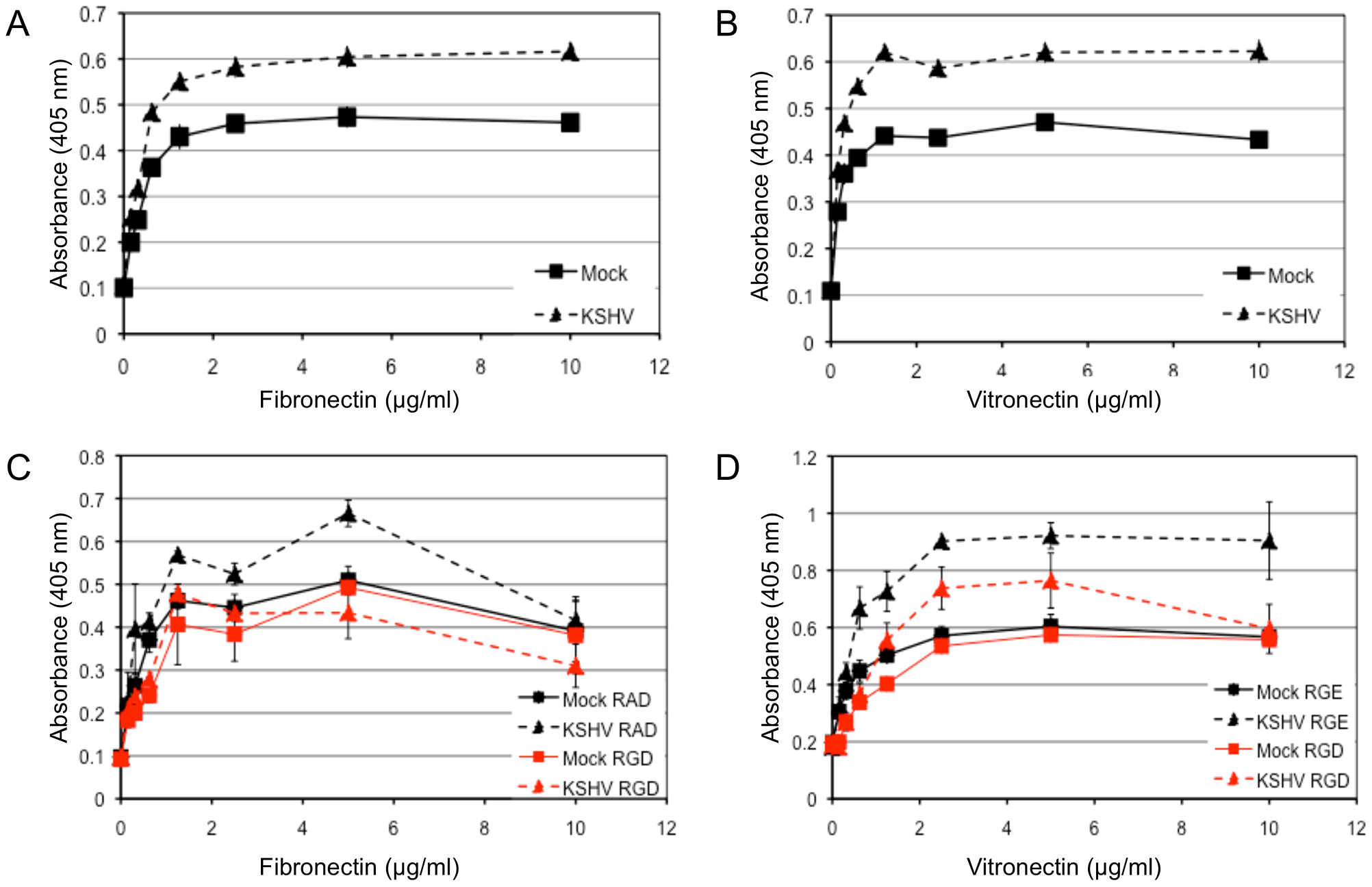 KSHV latent infection promotes adhesion to fibronectin and vitronectin in an integrin-dependent fashion.