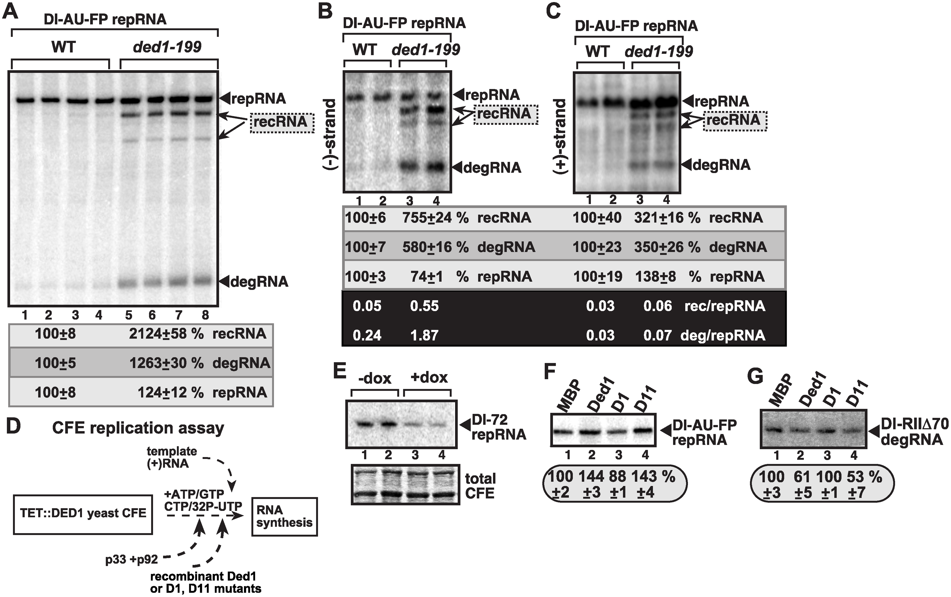 Suppression of TBSV recRNA accumulation by Ded1p in <i>in vitro</i> replication assays.