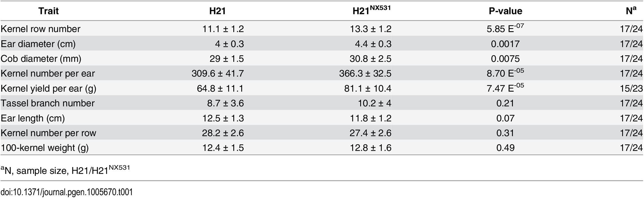 Pleiotropic effects of <i>KRN4</i>.