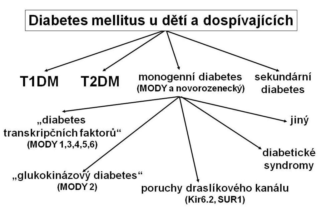 Typy diabetu u dětí a dospívajících. Řada pacientů s monogenním diabetem je mylně klasifikována jako diabetes mellitus 1. typu, případně 2. typu, protože tyto typy diabetu jsou známější. Správné zařazení typu diabetu pomáhá určit optimální terapii i dlouhodobou prognózu nemoci. T1DM – diabetes mellitus 1. typu T2DM – diabetes mellitus 2. typu MODY – maturity-onset diabetes of the young