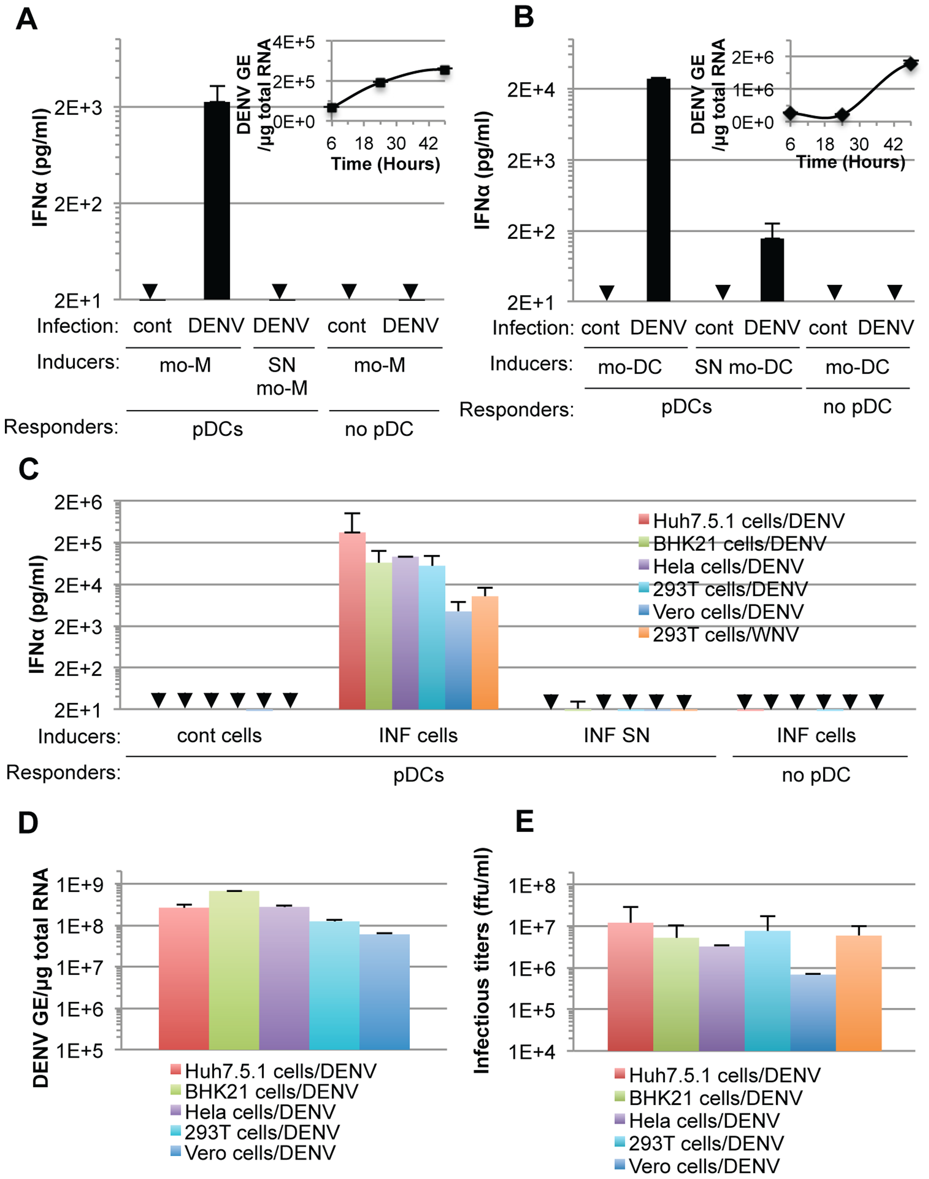 pDC IFNα secretion is triggered by DENV infected primary cells and is not DENV-restricted.