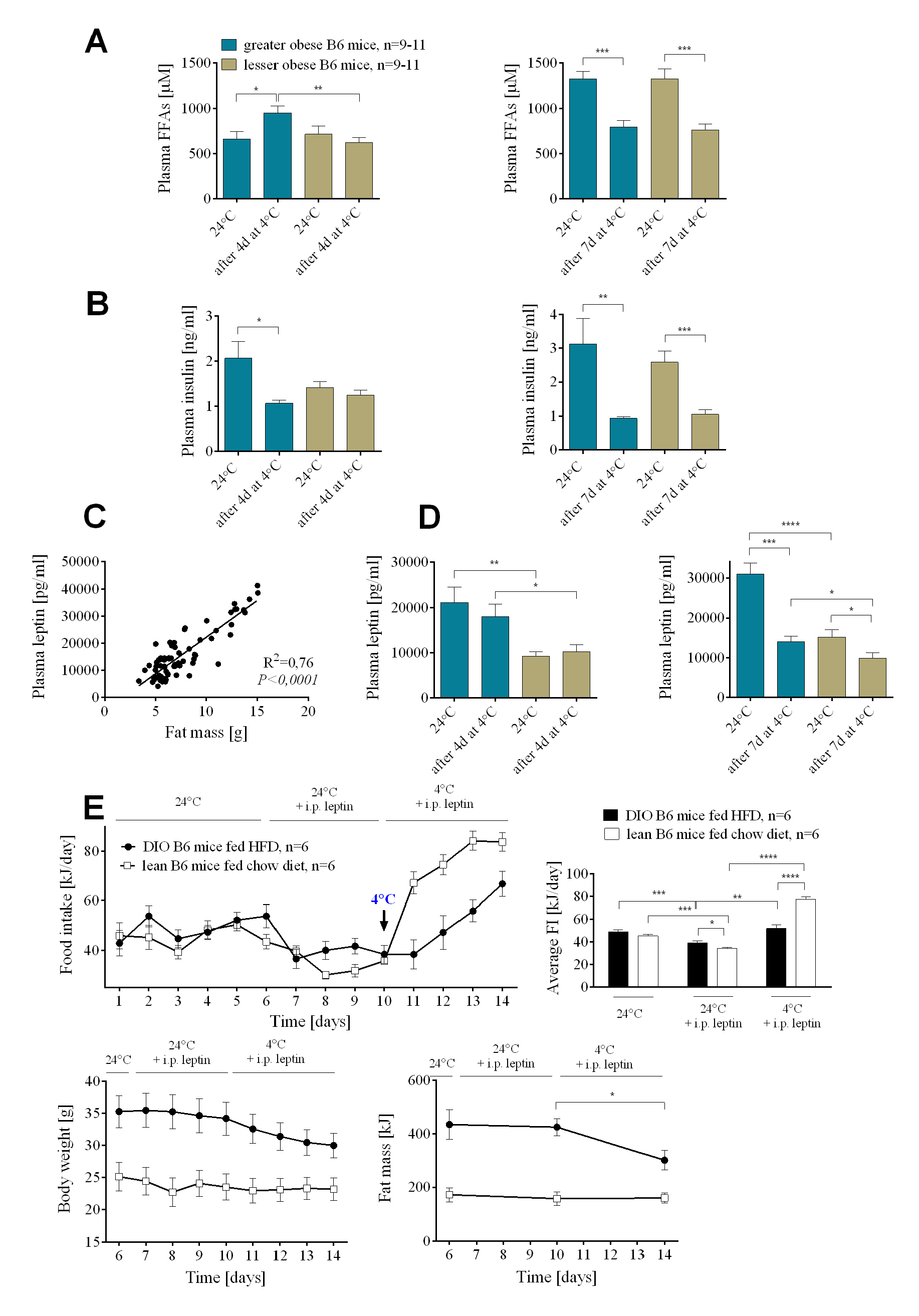 Insulin and leptin resistance in wild-type B6 DIO mice.