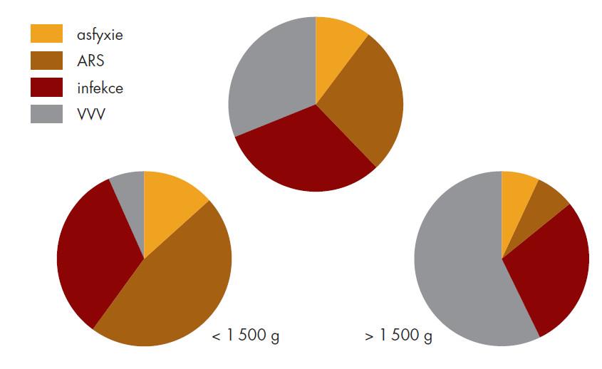 Hlavní příčiny úmrtí v JMK (2005).