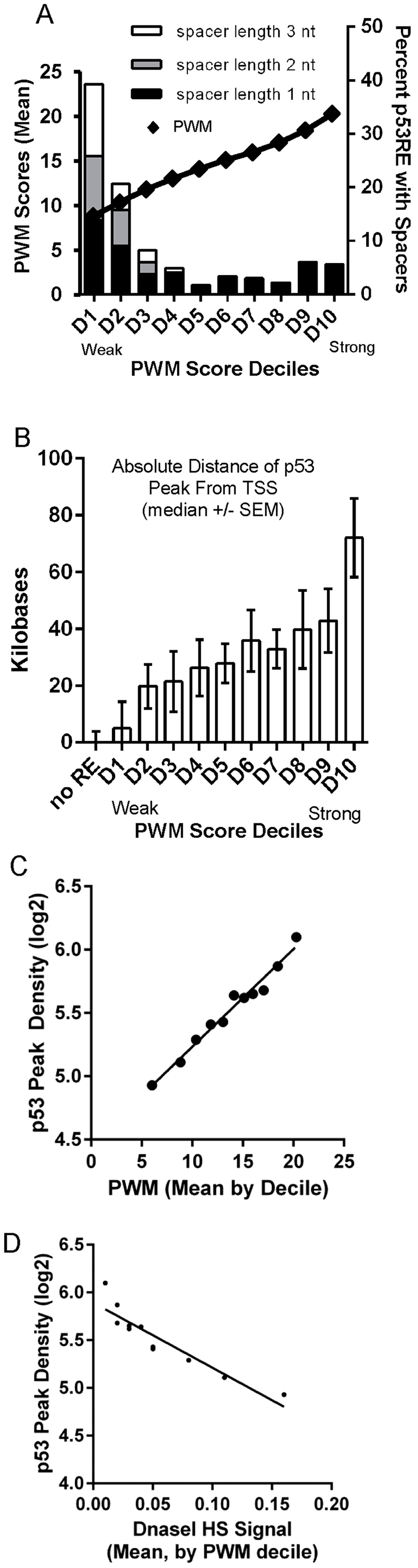 Best PWMs are correlated with chromatin accessibility and p53 occupancy.