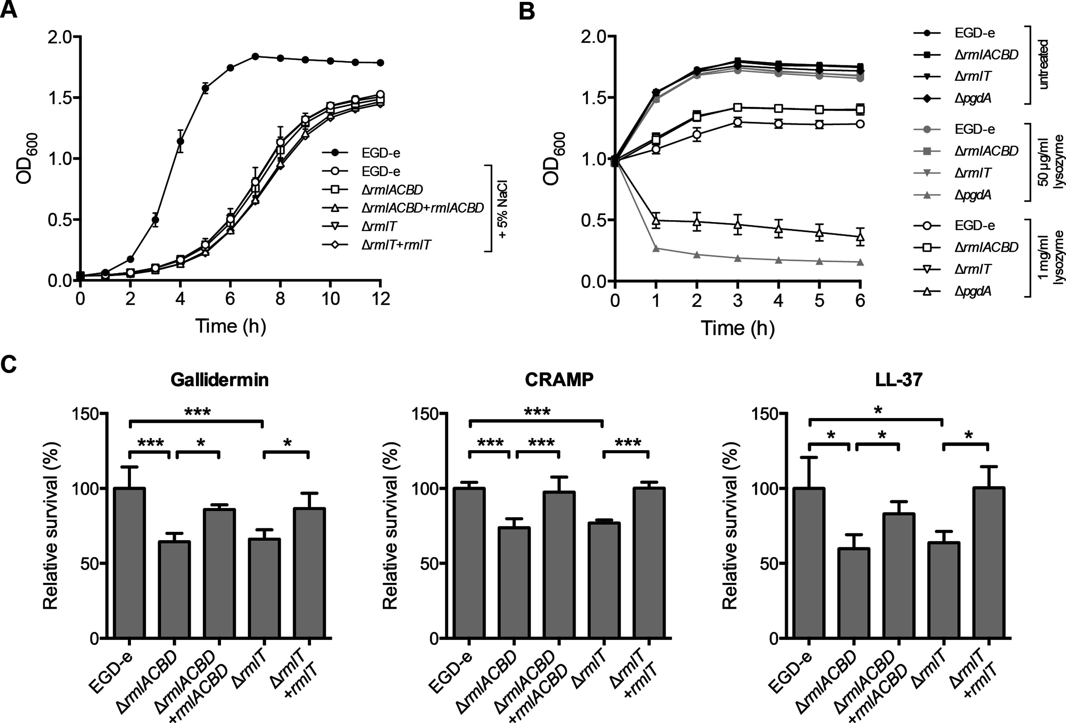 WTA l-rhamnosylation promotes <i>Lm</i> resistance against AMPs.