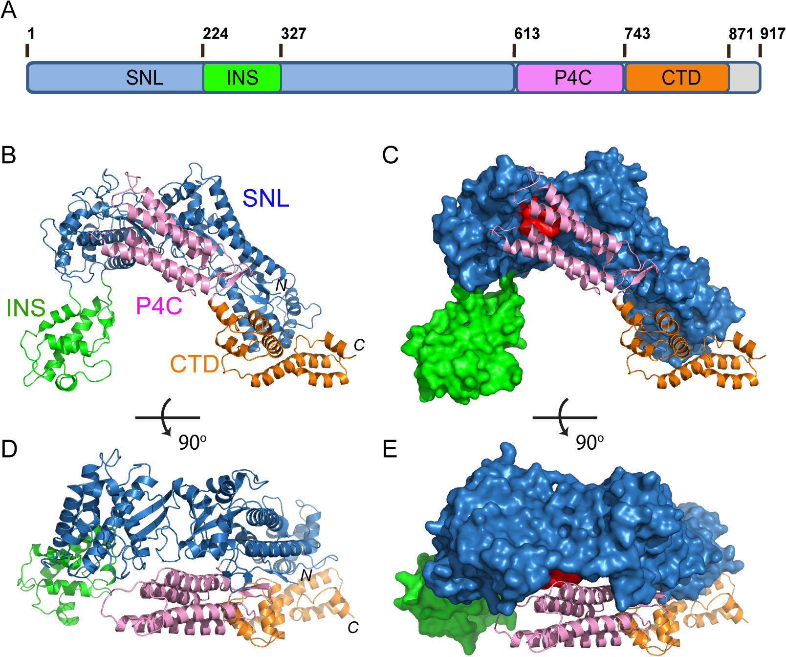 Crystal structure of SidC871 (aa. 1–871).