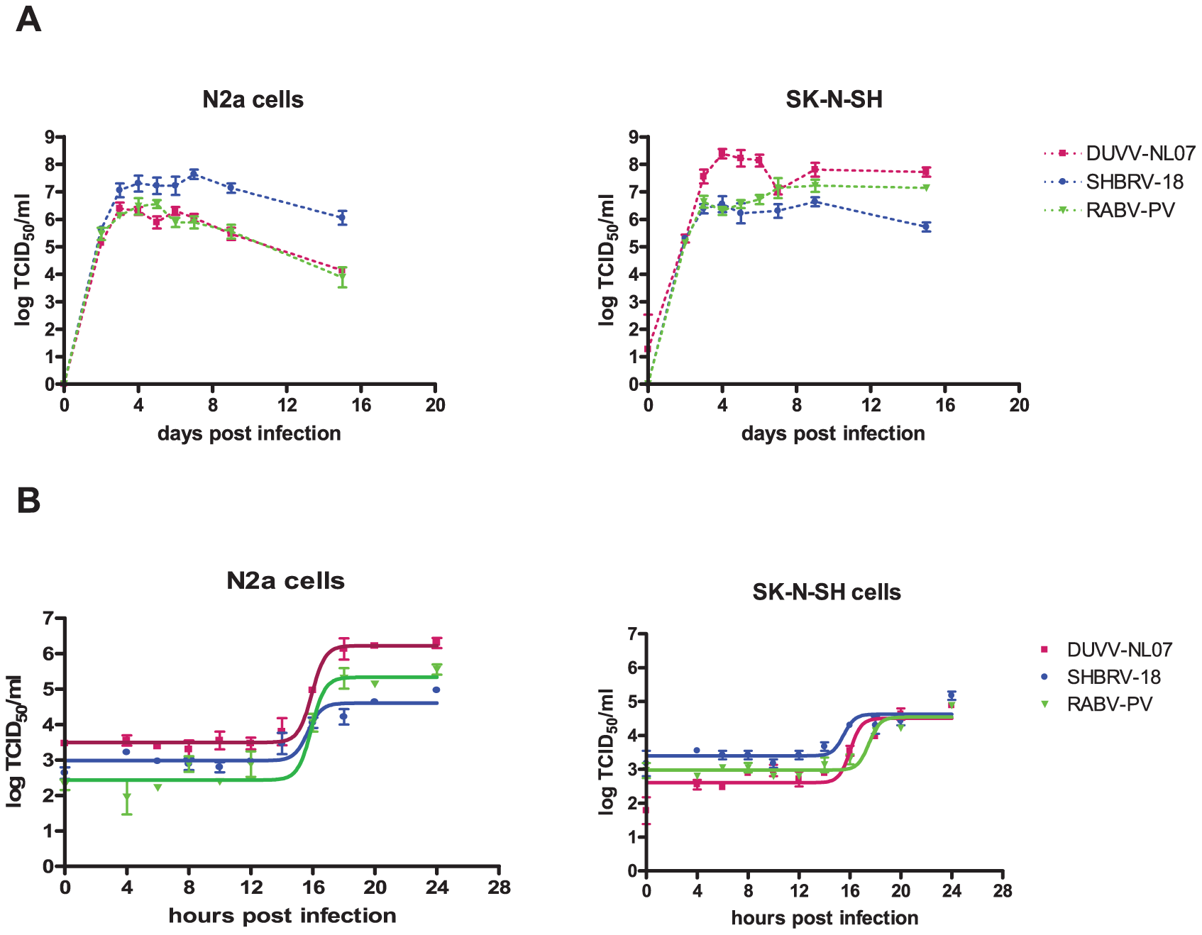 Replication characteristics of DUVV-NL07 in mouse or human neuroblastoma cells.