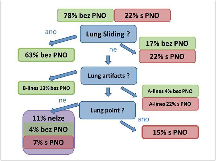 Schéma pro diagnostiku pneumotoraxu [12]