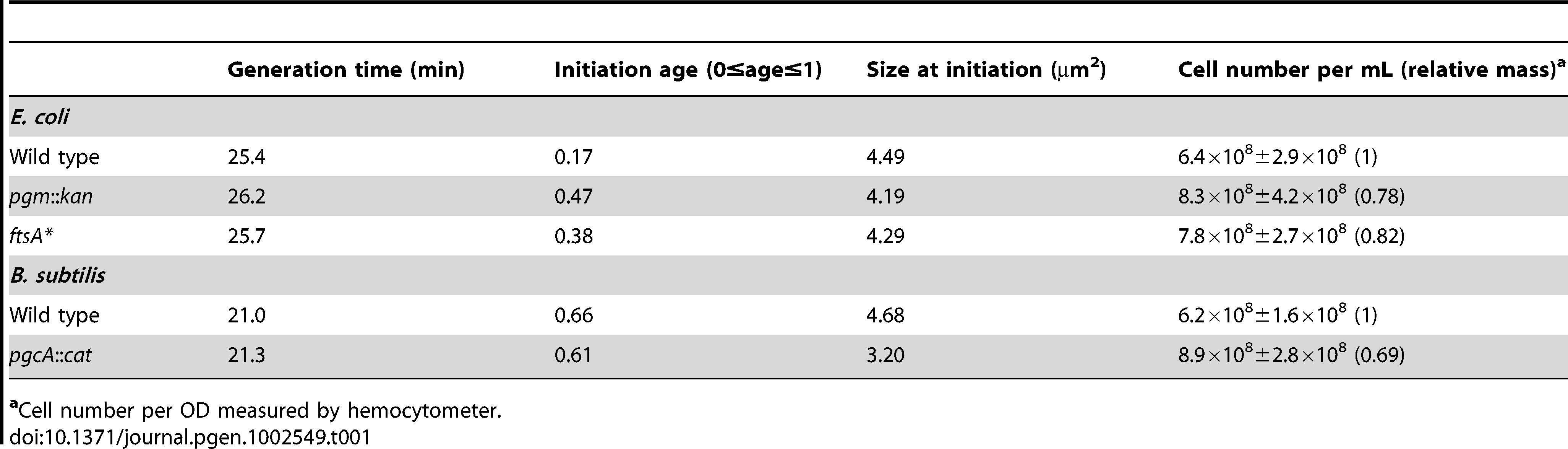 Initiation age and mass of <i>E. coli</i> and <i>B. subtilis</i> cells in LB.
