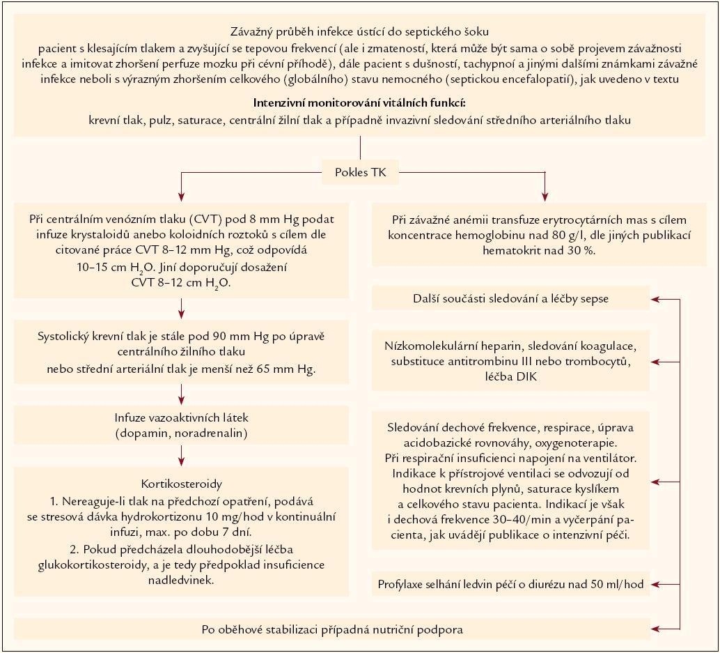 Léčba pacienta s hrozícím nebo počínajícím septickým šokem.