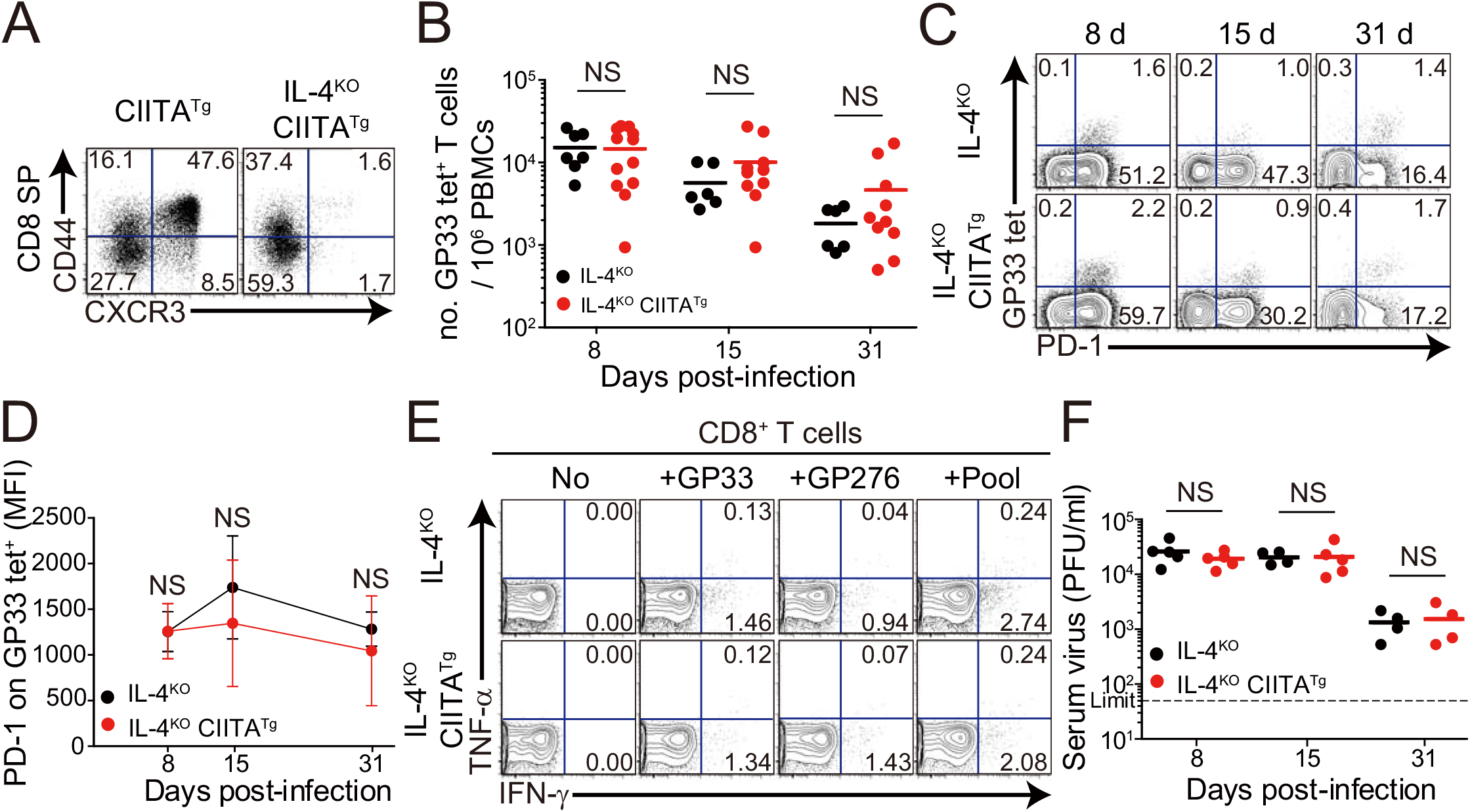 CD8<sup>+</sup> T cells responses in IL-4-deficient CIITA<sup>Tg</sup> and control mice during LCMV clone 13 infection.