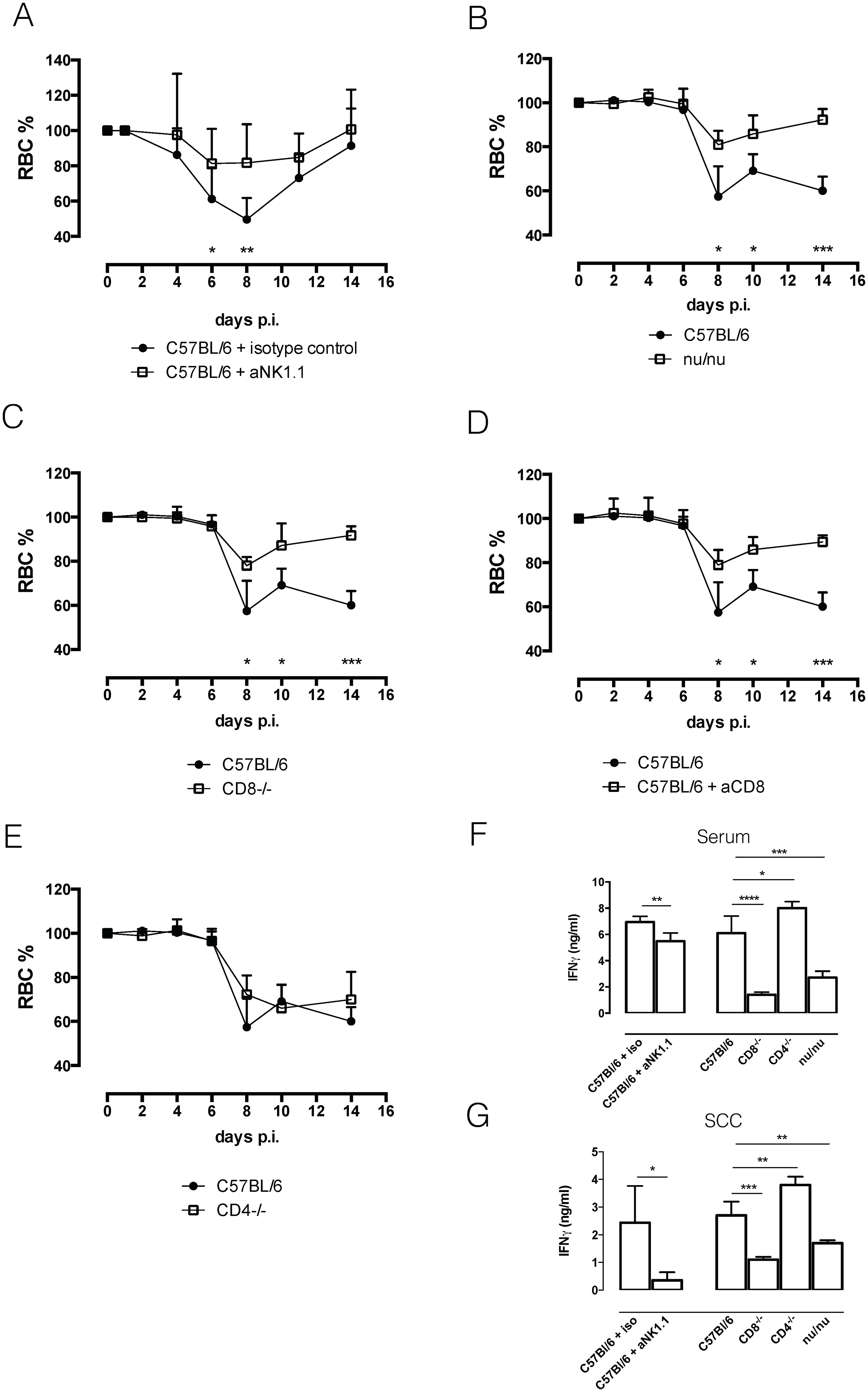 Anemia profiles and IFNγ production.
