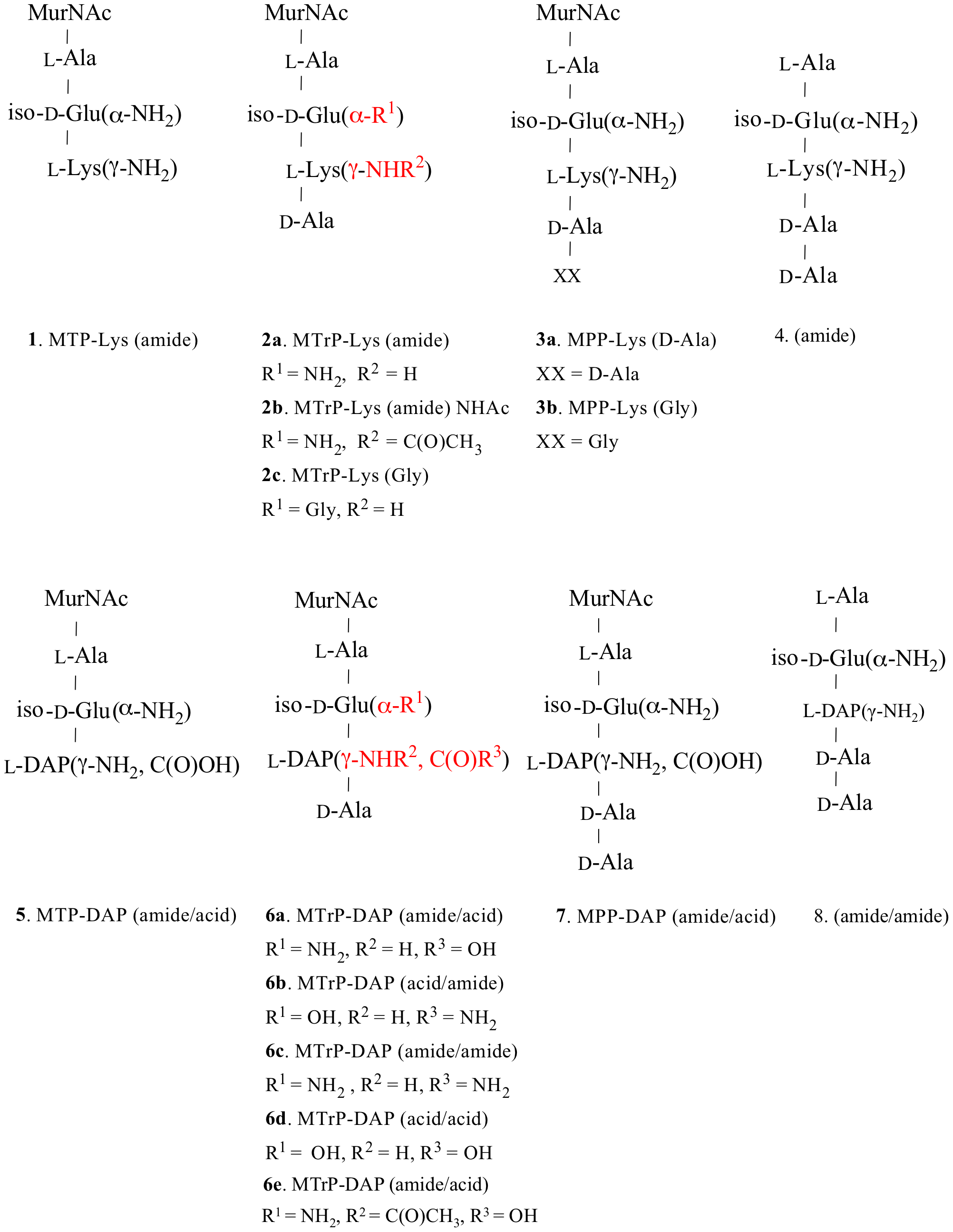 Structures of synthetic muropeptides used in the binding and phenotypic assays.