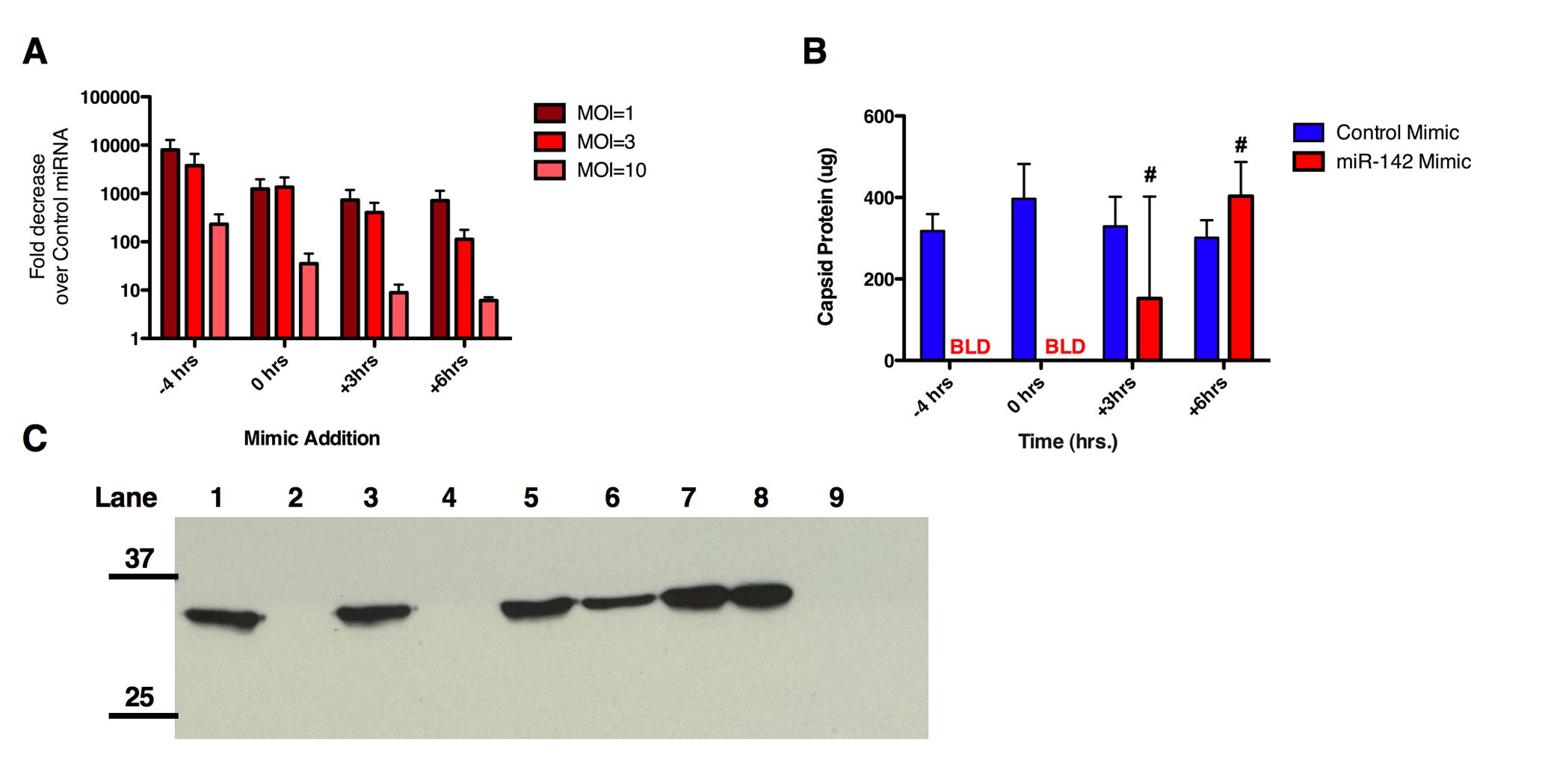MicroRNAs can affect particle to infectivity ratio of CVA21.