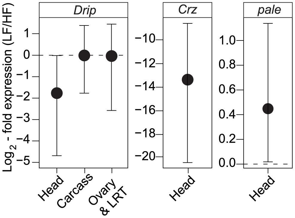 Tissue-specific expression of <i>Drip</i>, <i>Crz</i>, and <i>pale</i> between the different RIL alleles.