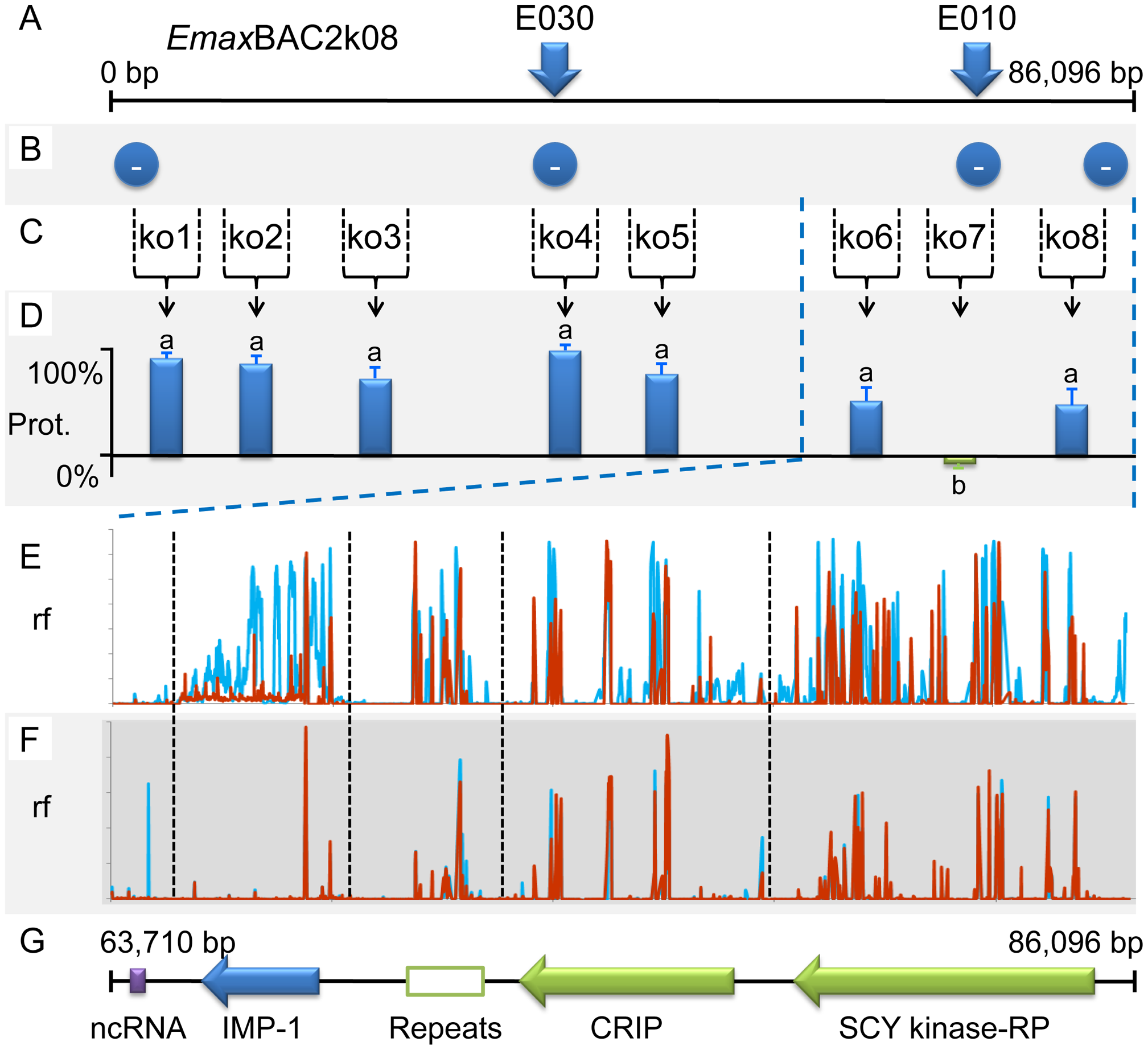 Fine mapping locus 5 correlated with susceptibility to strain-specific immune killing.
