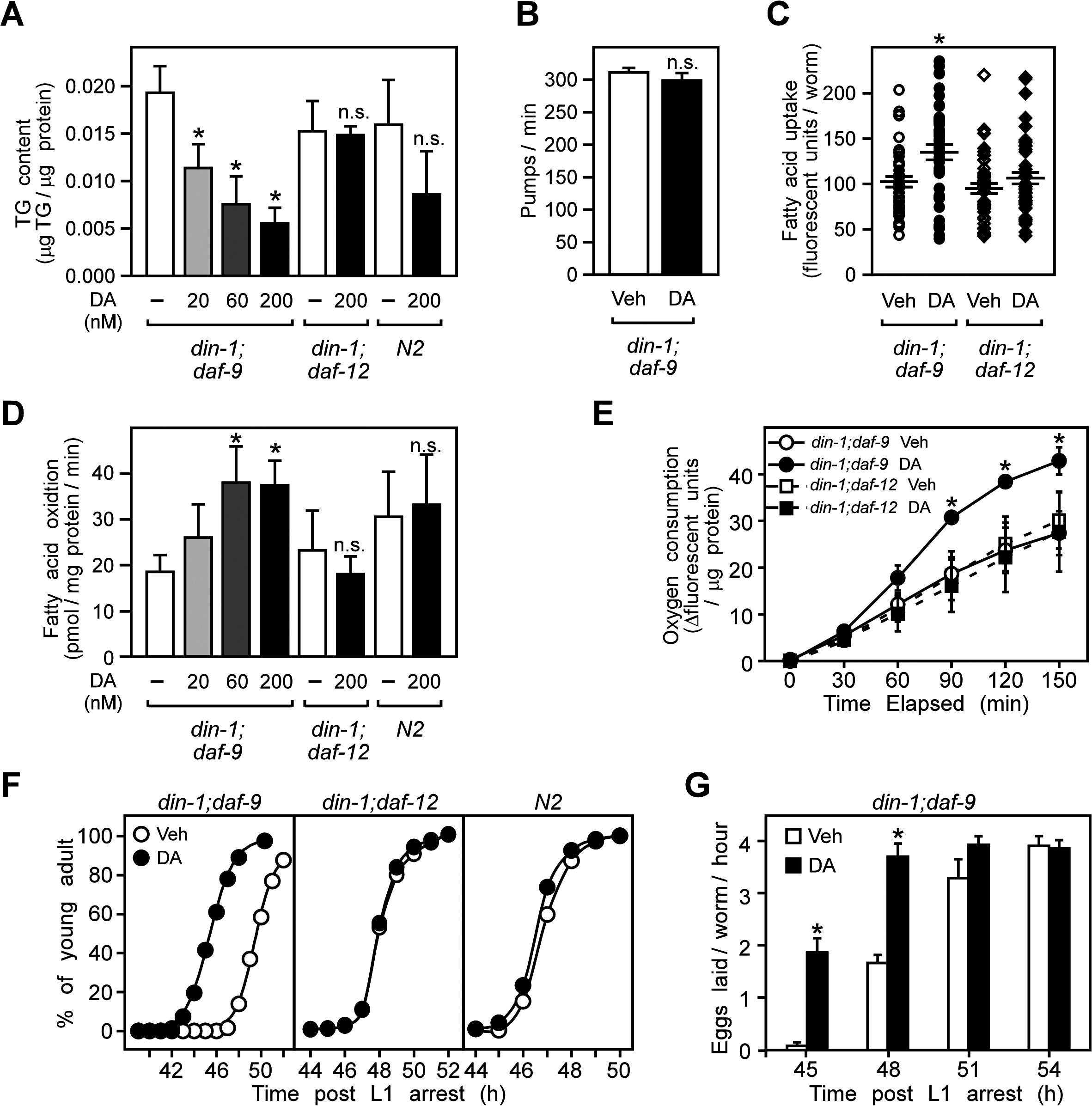DAF-12 activation promotes aerobic lipid metabolism and reproductive growth in <i>C</i>. <i>elegans</i>.