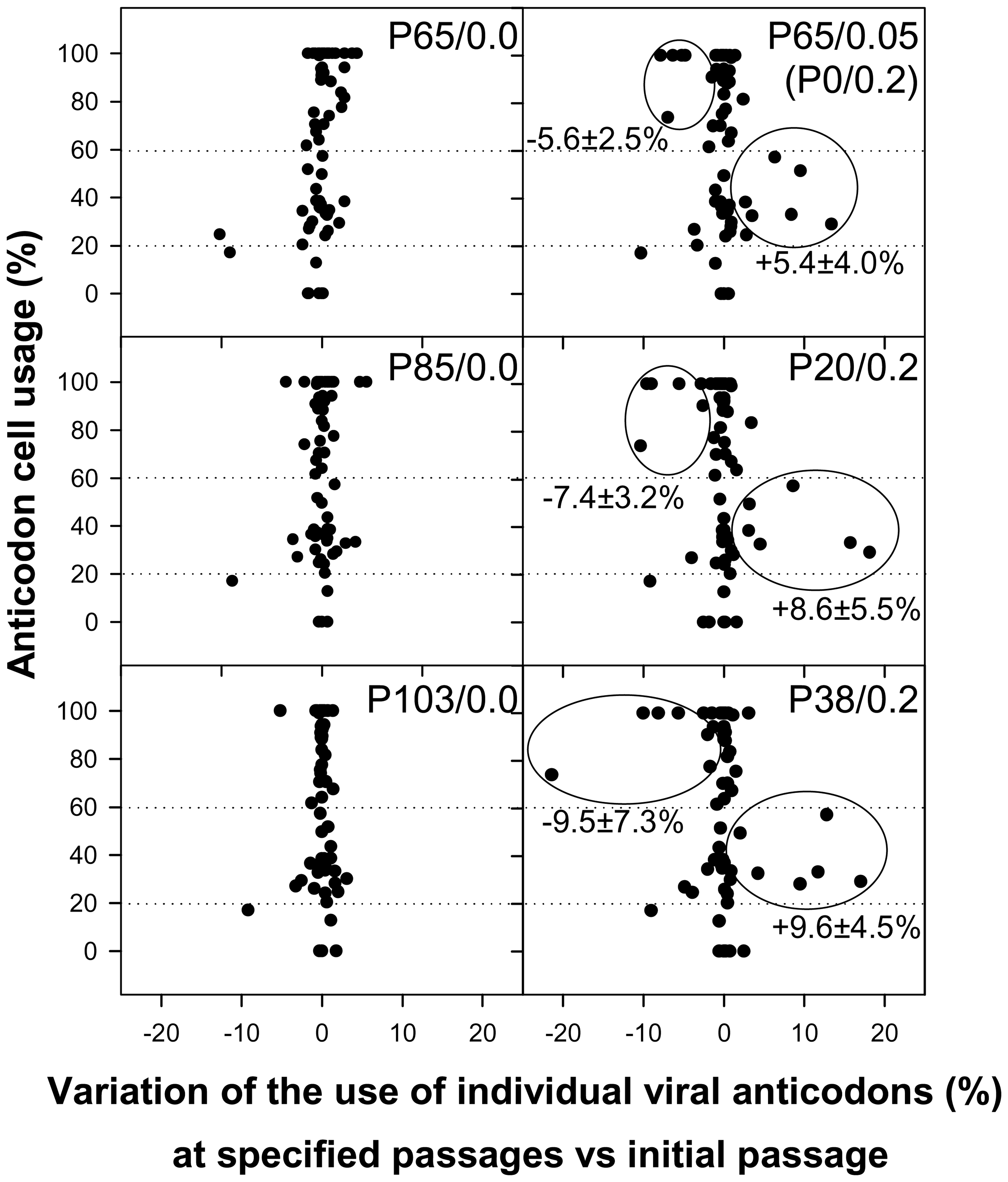 HAV anticodon usage variation in the capsid coding region during the adaptation to 0.2 µg/ml of AMD.
