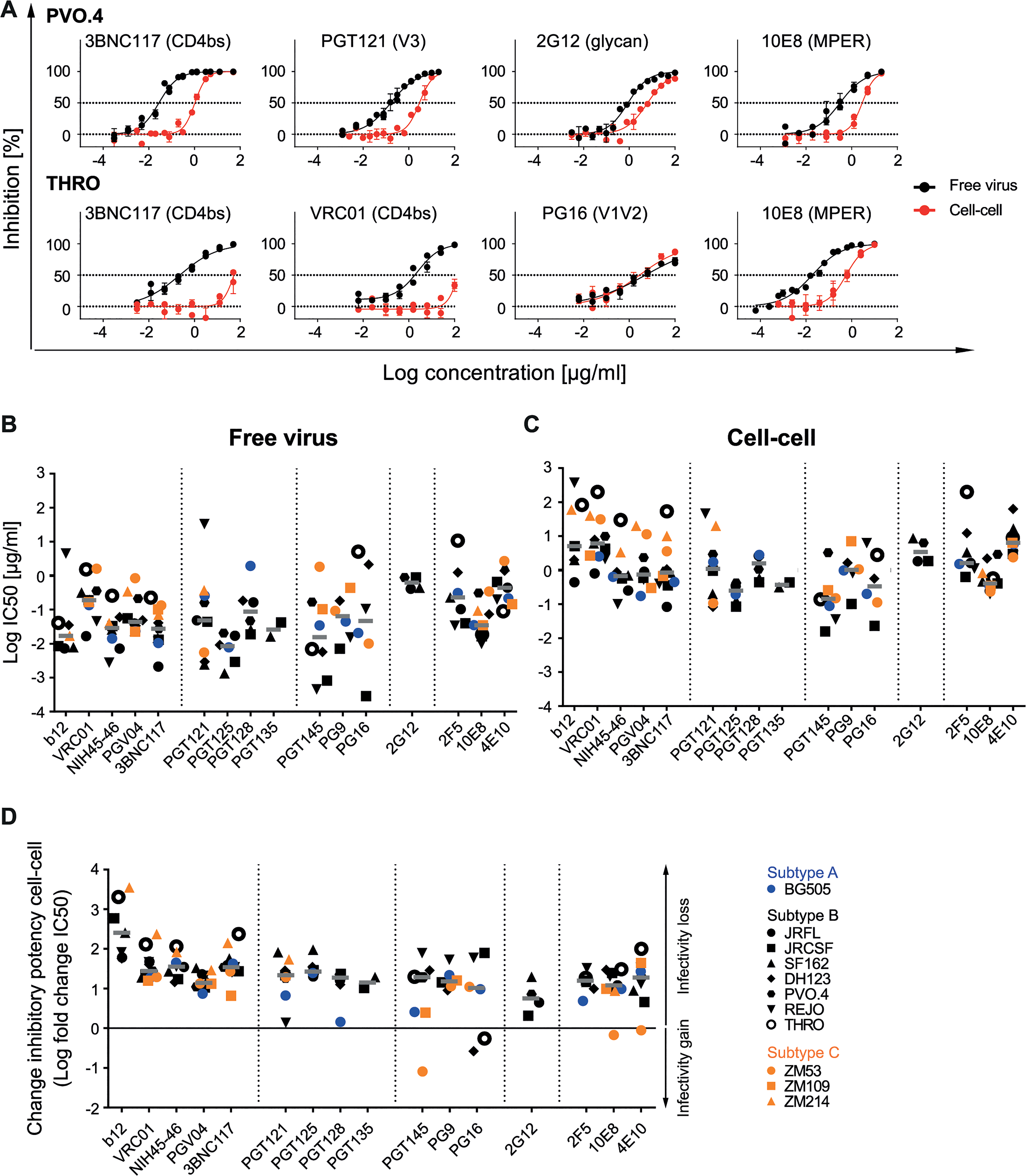 Decrease of bnAb activity during cell-cell transmission is variable and strain-dependent.