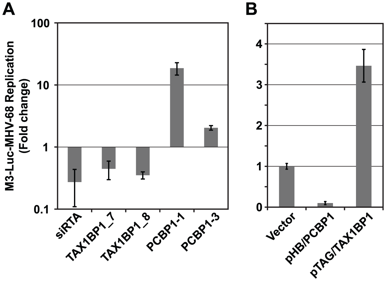 PCBP1 and TAX1BP1 have opposing effects on MHV-68 replication.