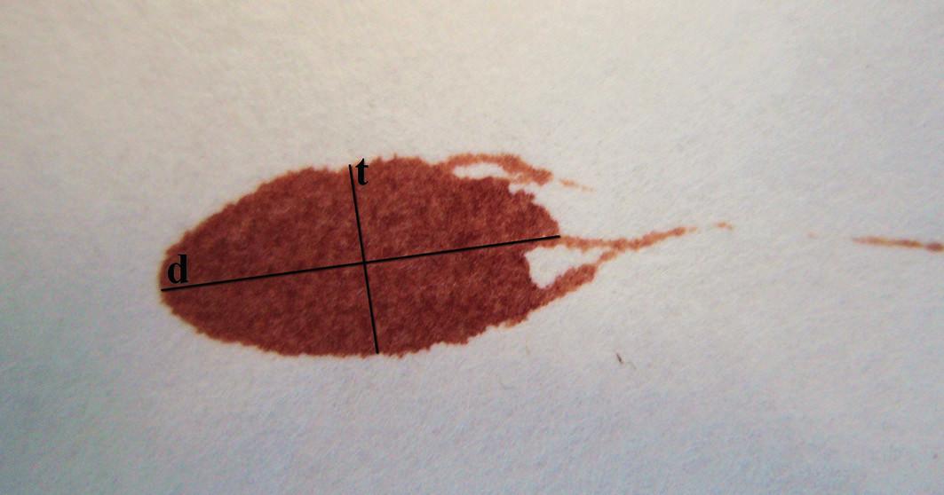 Jde o jednu krevní kapku s načrtnutými přímkami, které znázorňují její šířku a délku. Údaje je potřeba změřit co nejpřesněji v mm. Pokud vycházíme z předpokladu, že: t je šířka a d je délka krevní kapky, tak dále můžeme vypočítat úhel dopadu krevní kapky. K tomu použijeme vzorec: sinα = t /d. Podobně možno vypočítat i: tgα = t /d.