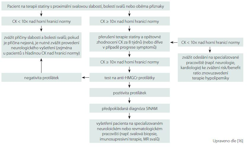 Schéma vhodného diagnostického algoritmu u podezření na statiny indukovanou myopatii.