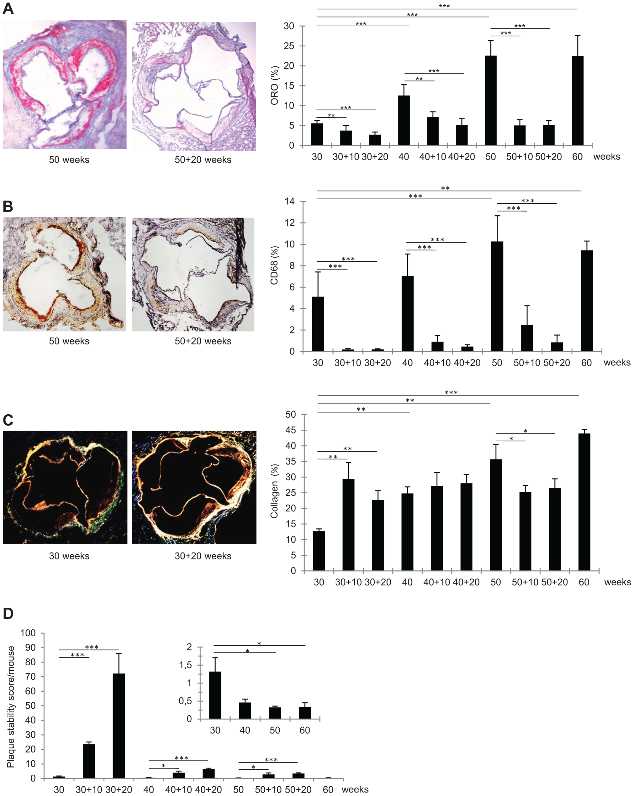 Immunohistochemical characteristics of representative frozen sections of aortic roots from <i>Ldlr<sup>−/−</sup>Apob</i><sup>100/100</sup><i>Mttp</i><sup>flox/flox</sup> and <i>Ldlr<sup>−/−</sup>Apob</i><sup>100/100</sup><i>Mttp</i><sup>Δ/Δ</sup> mice.