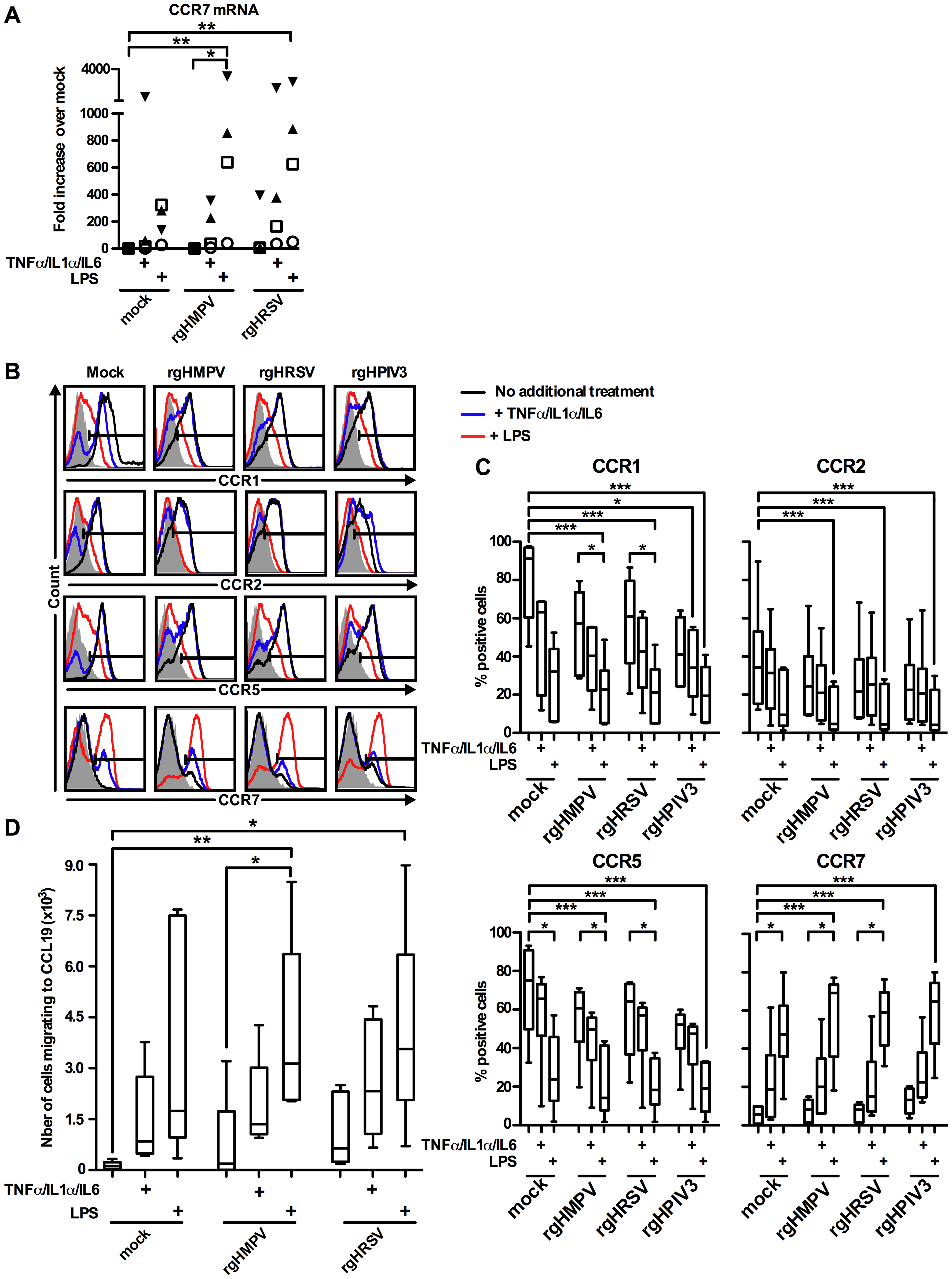 A cocktail of pro-inflammatory cytokines TNF-α/IL-1α/IL-6 partly restores the CCR7-driven migration of rgHMPV- or rgHRSV-stimulated MDDC.