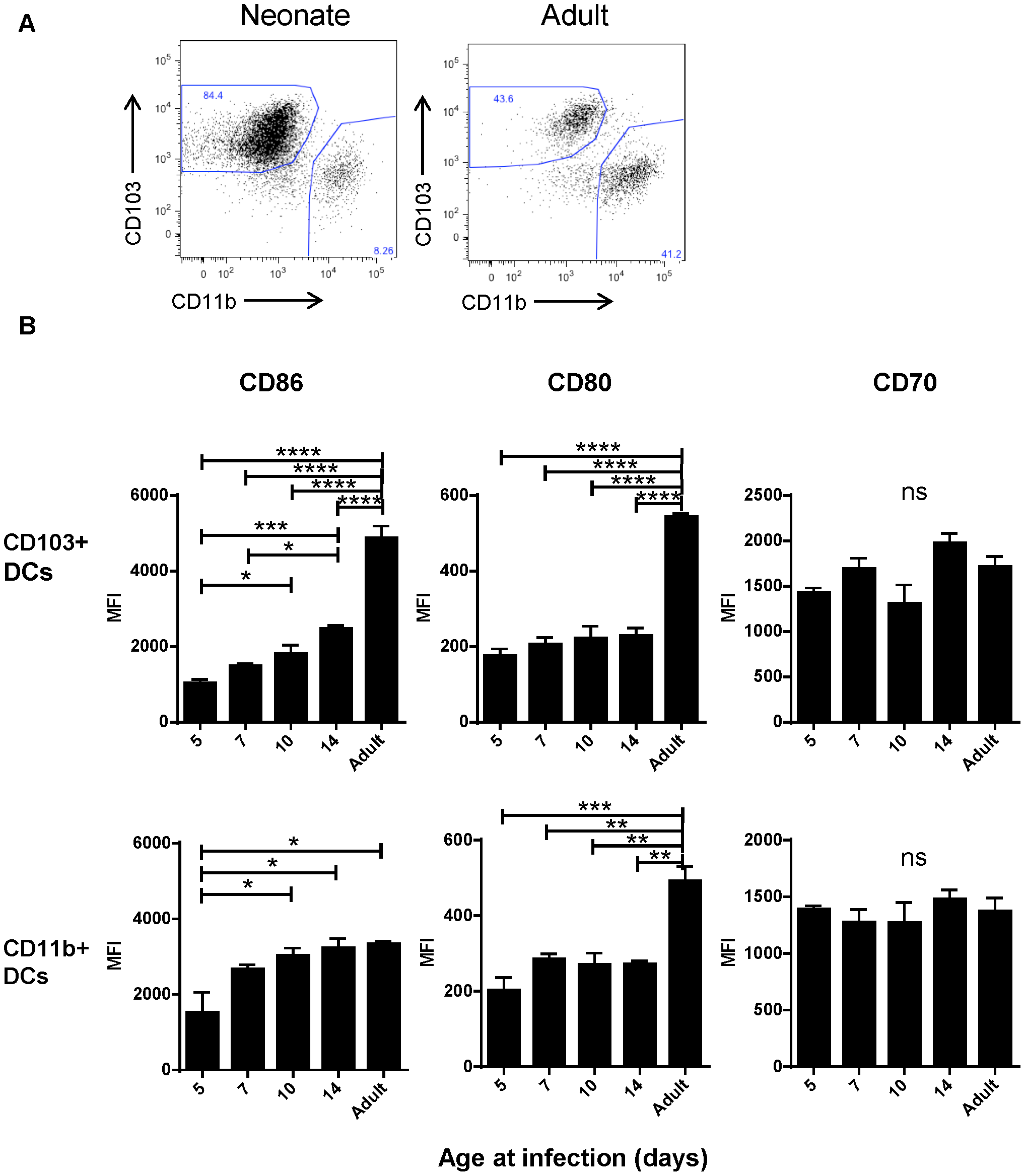 Age-dependent phenotypic changes in the CD103+ and CD11b+ DC populations in the MLN three days post-infection.