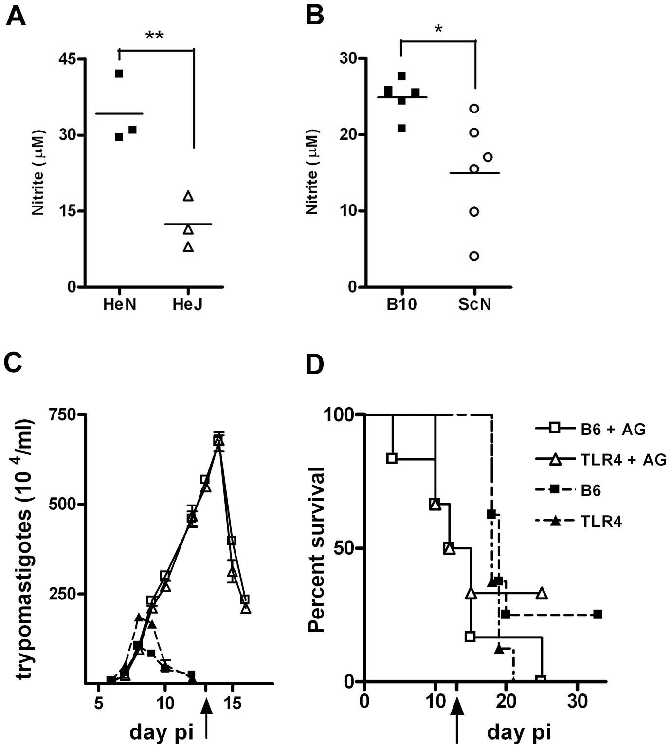 <i>In vivo</i> blockage of NO production turns WT and <i>Tlr4<sup>−/−</sup></i> mice equally susceptible to infection with <i>T. cruzi</i>.