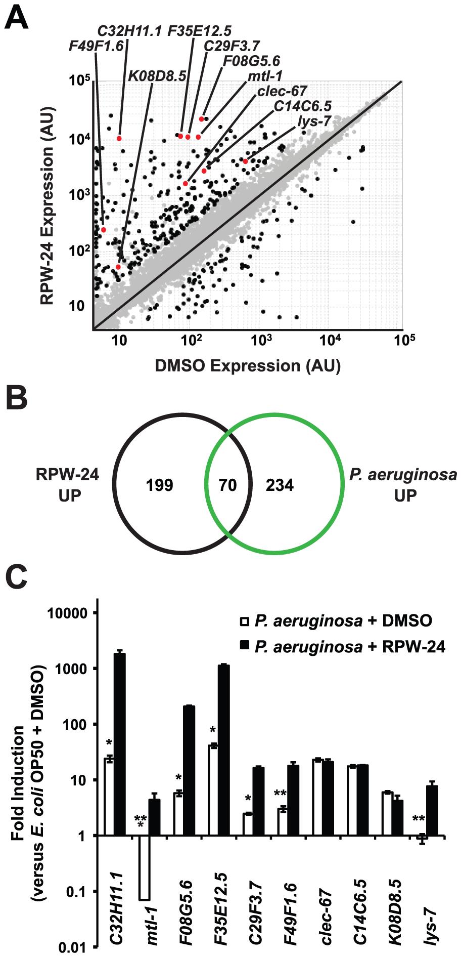 RPW-24 induces the transcription of putative immune effectors in <i>C. elegans</i>.