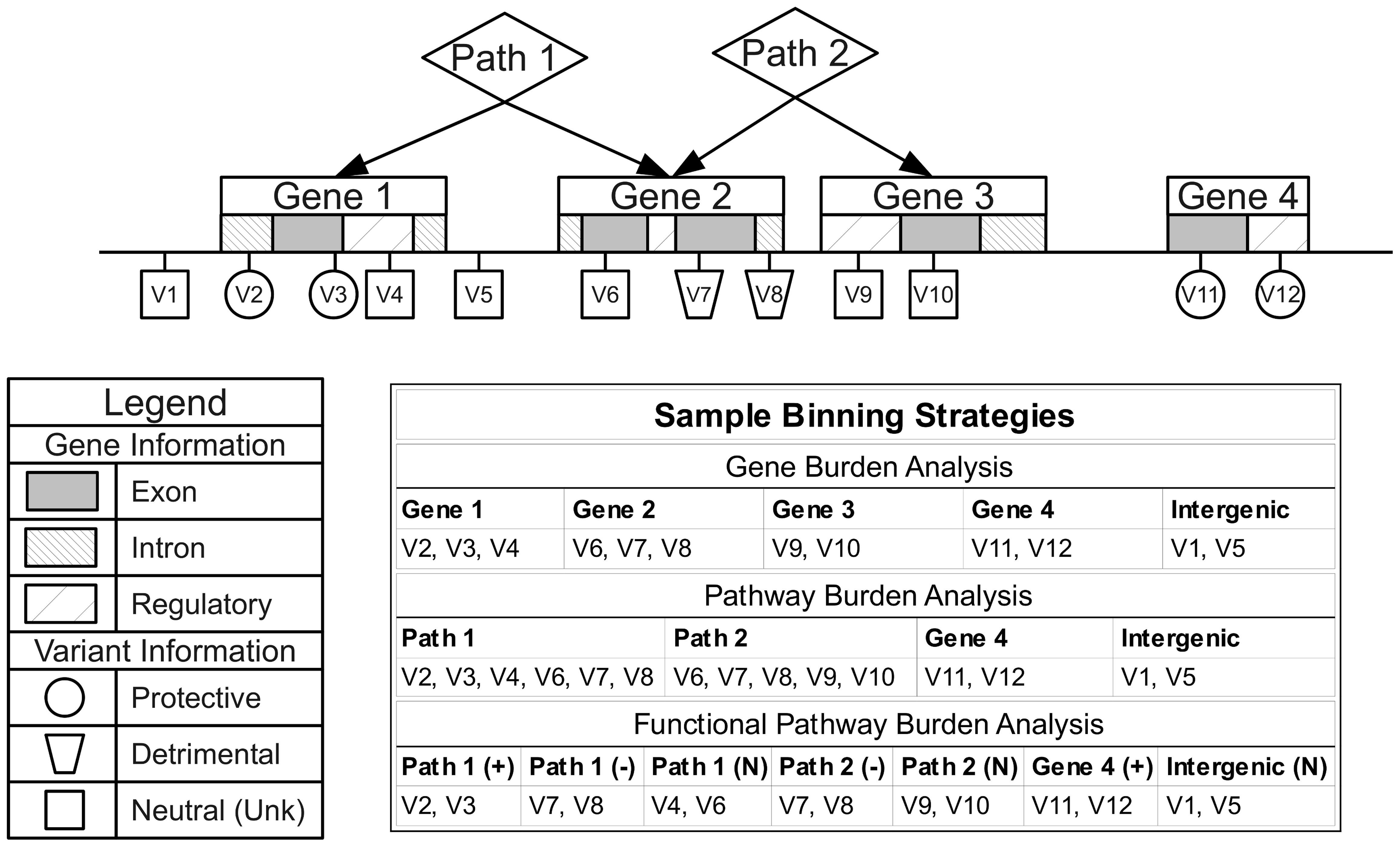 Alternate binning strategies using biological knowledge and functional or role annotations.