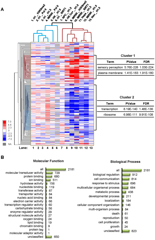 H1.5 enrichment in HGNC gene families.