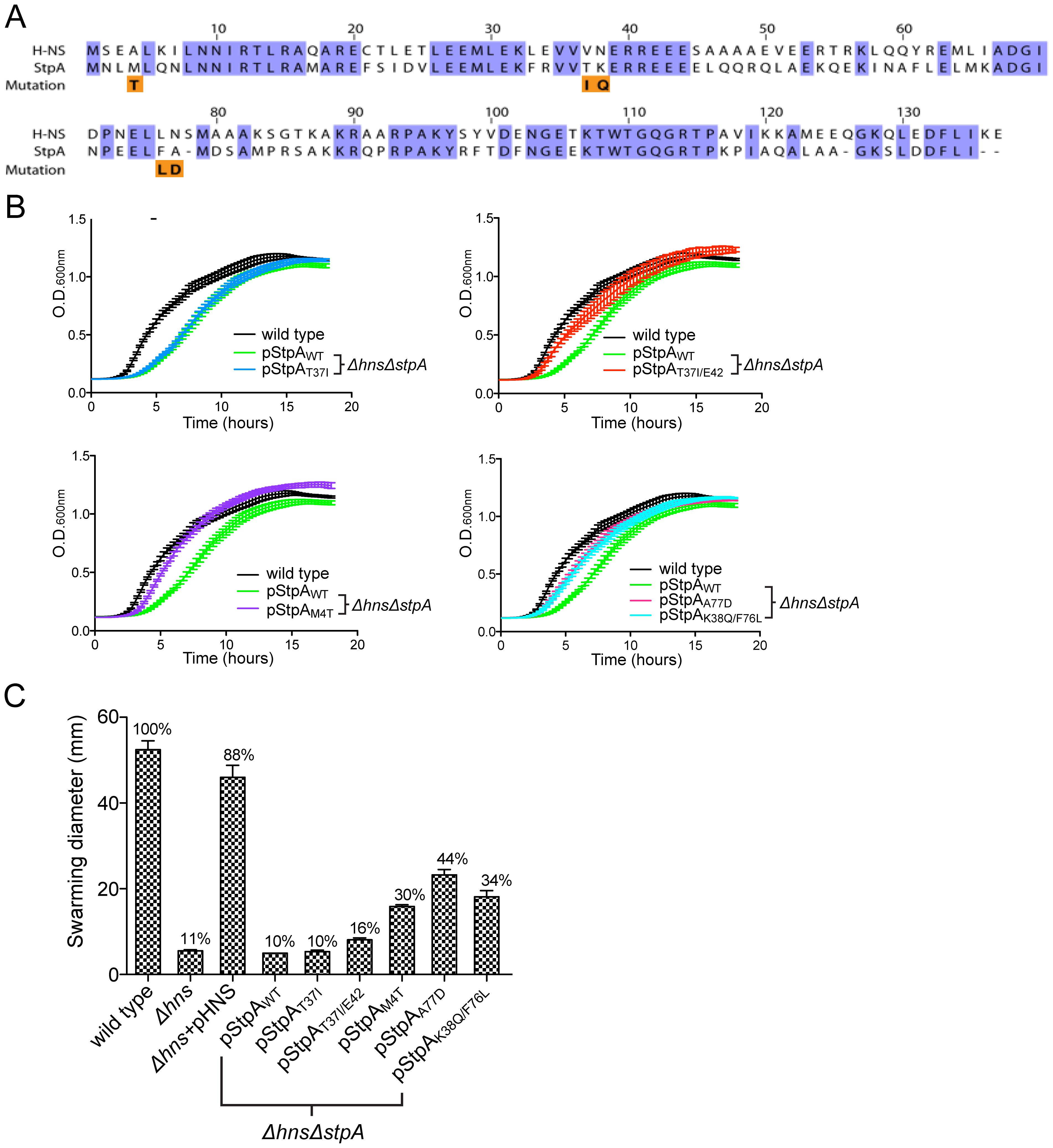 Missense mutations in the H-NS paralogue StpA partially restore the impaired growth and motility phenotypes of <i>hns</i> mutants.