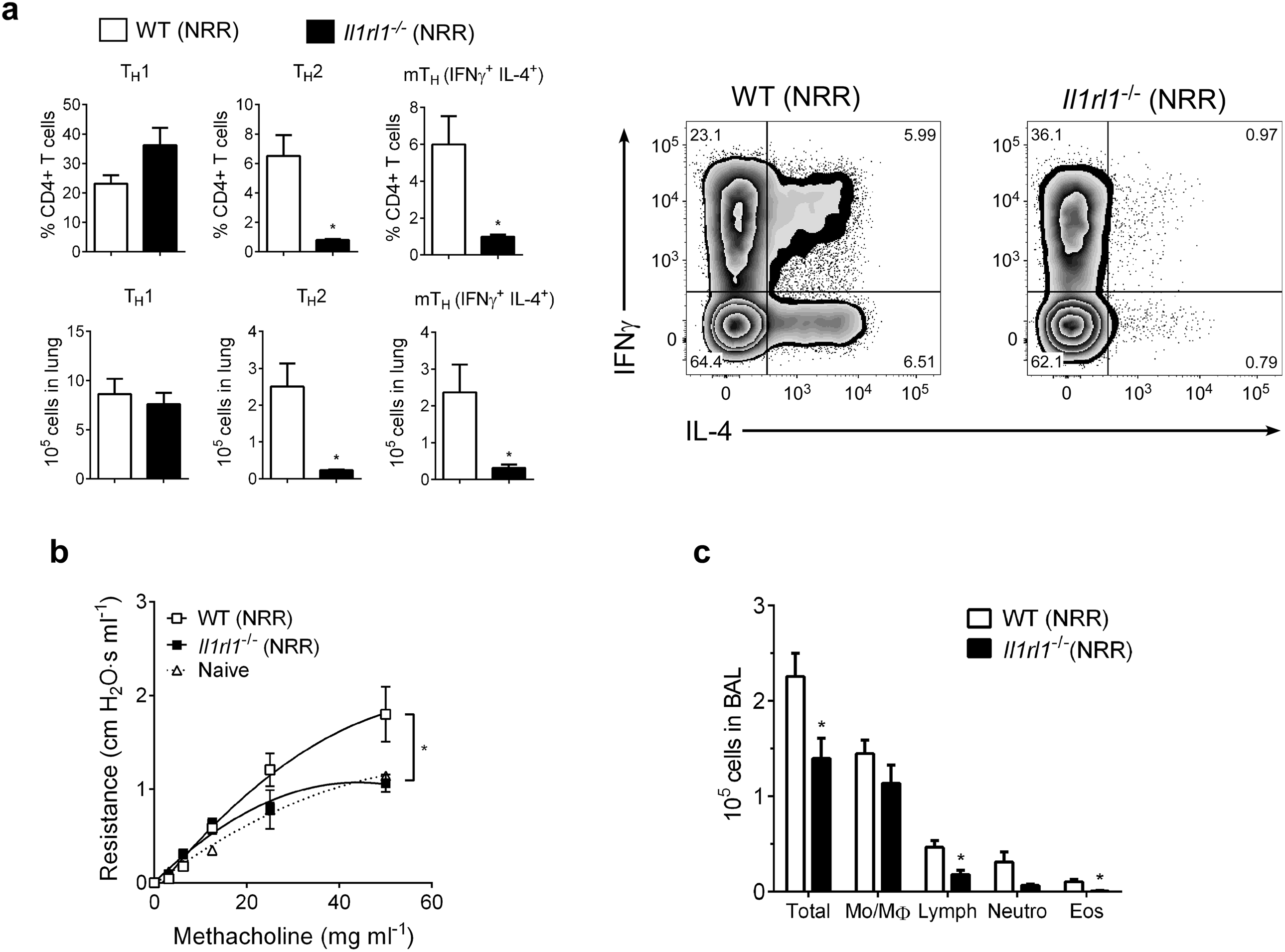 IL-33 signaling is required for neonatal RSV immunopathophysiology.