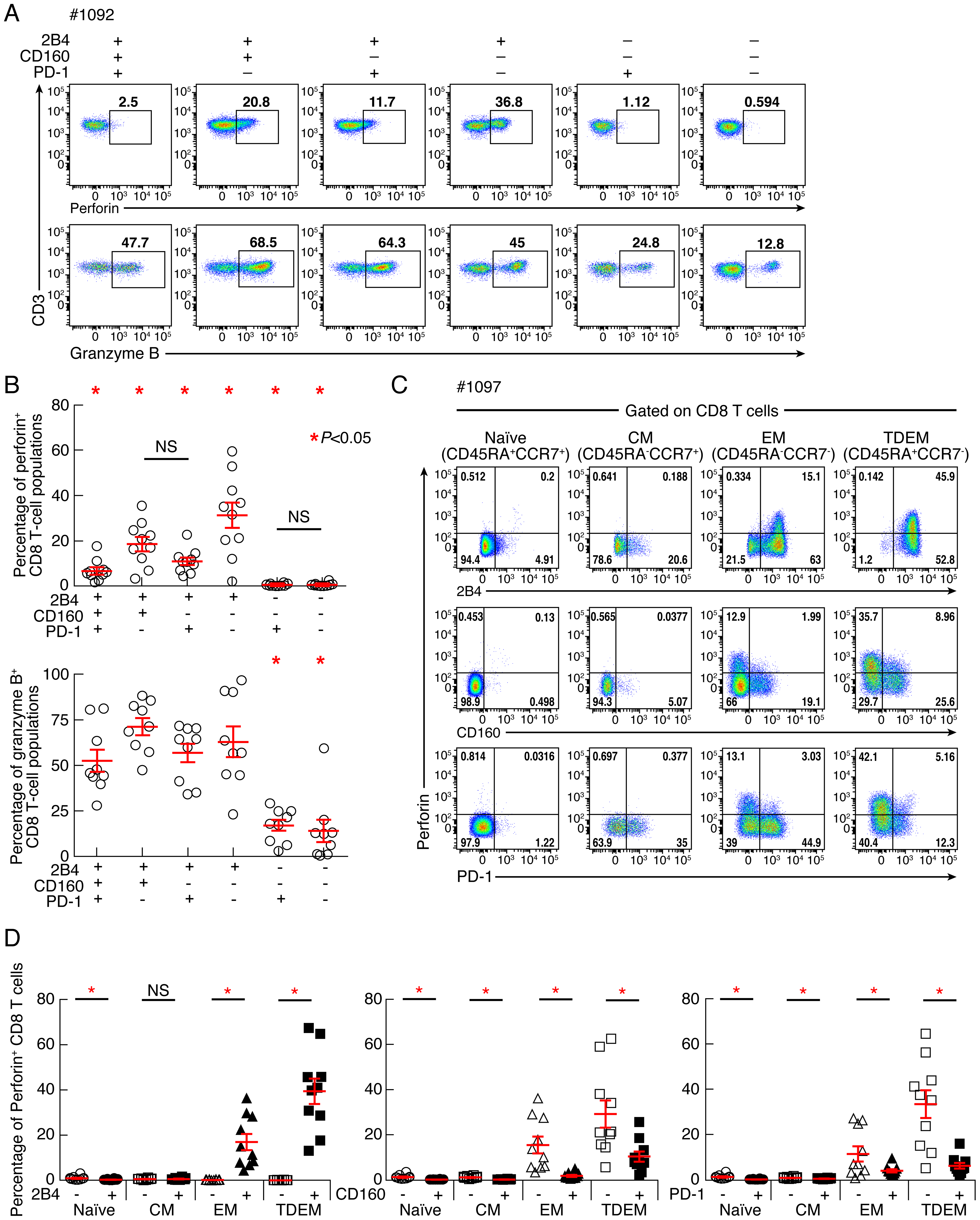Expression levels of perforin and granzyme B in CD8 T-cell subsets defined by the expression of 2B4, CD160 and PD-1.
