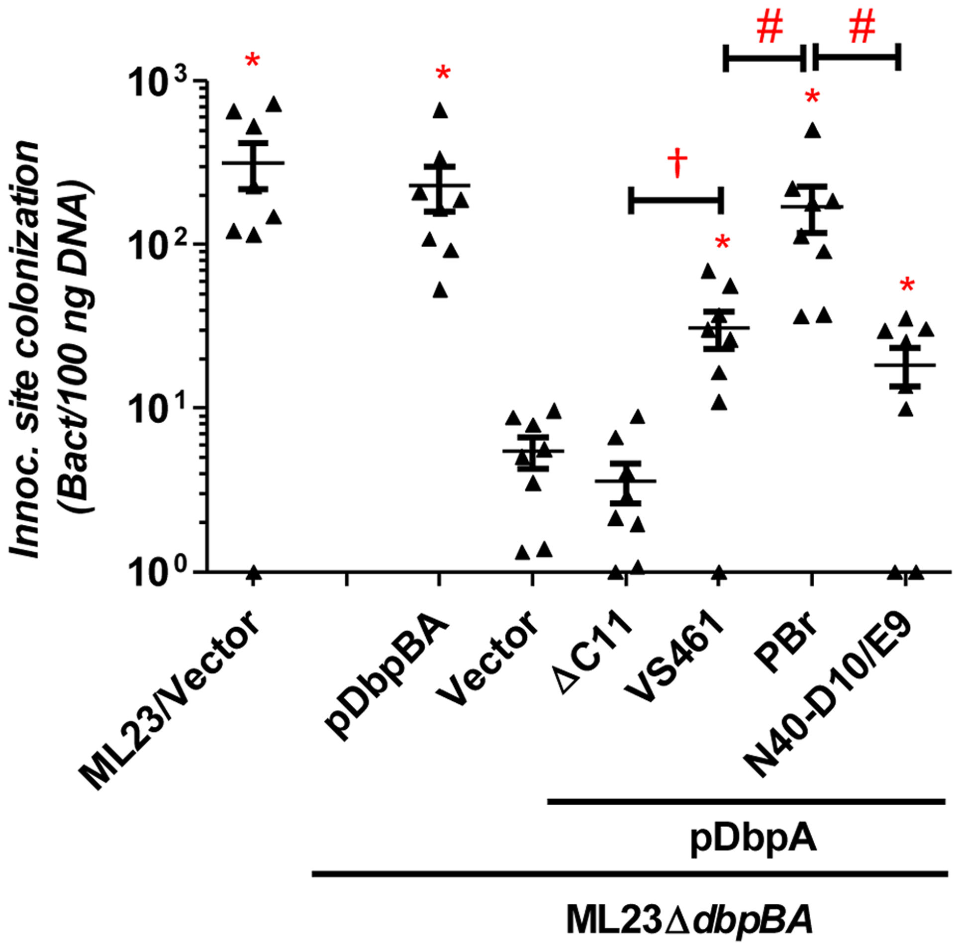 DbpA variants promote distinct <i>B. burgdorferi</i> inoculation site colonization during early infection.