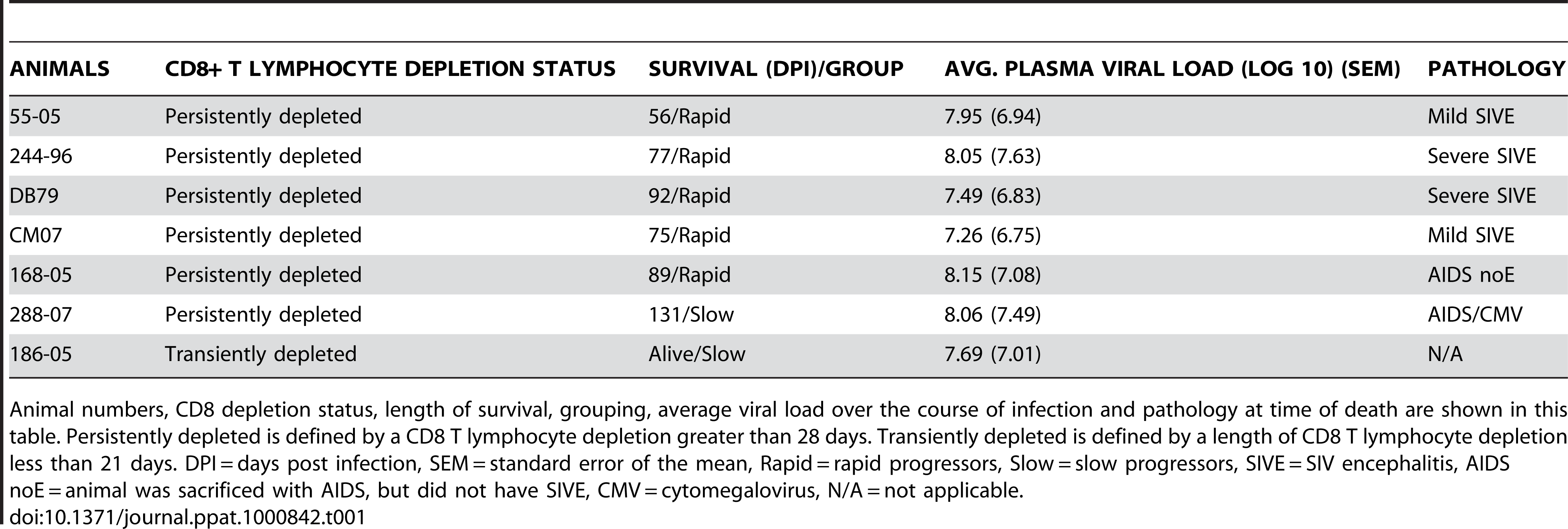 SIV CD8+ T lymphocyte depleted animals used in the study.