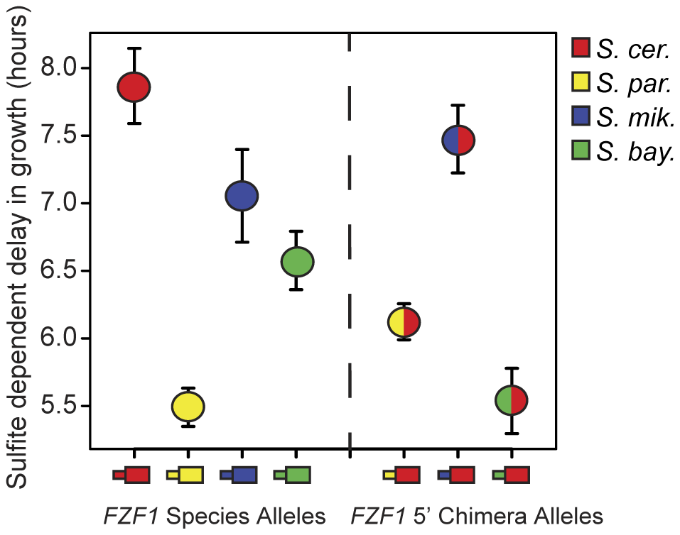 <i>FZF1</i> alleles from different species have diverged in function.