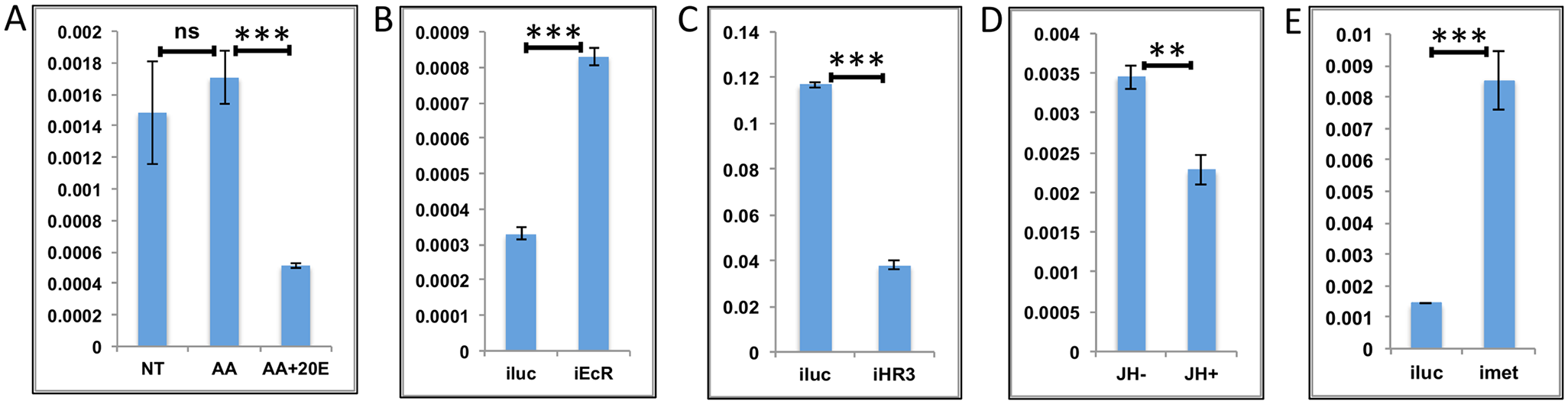 Effects of AAs, 20E, JH and HR3 on representative LMGs.