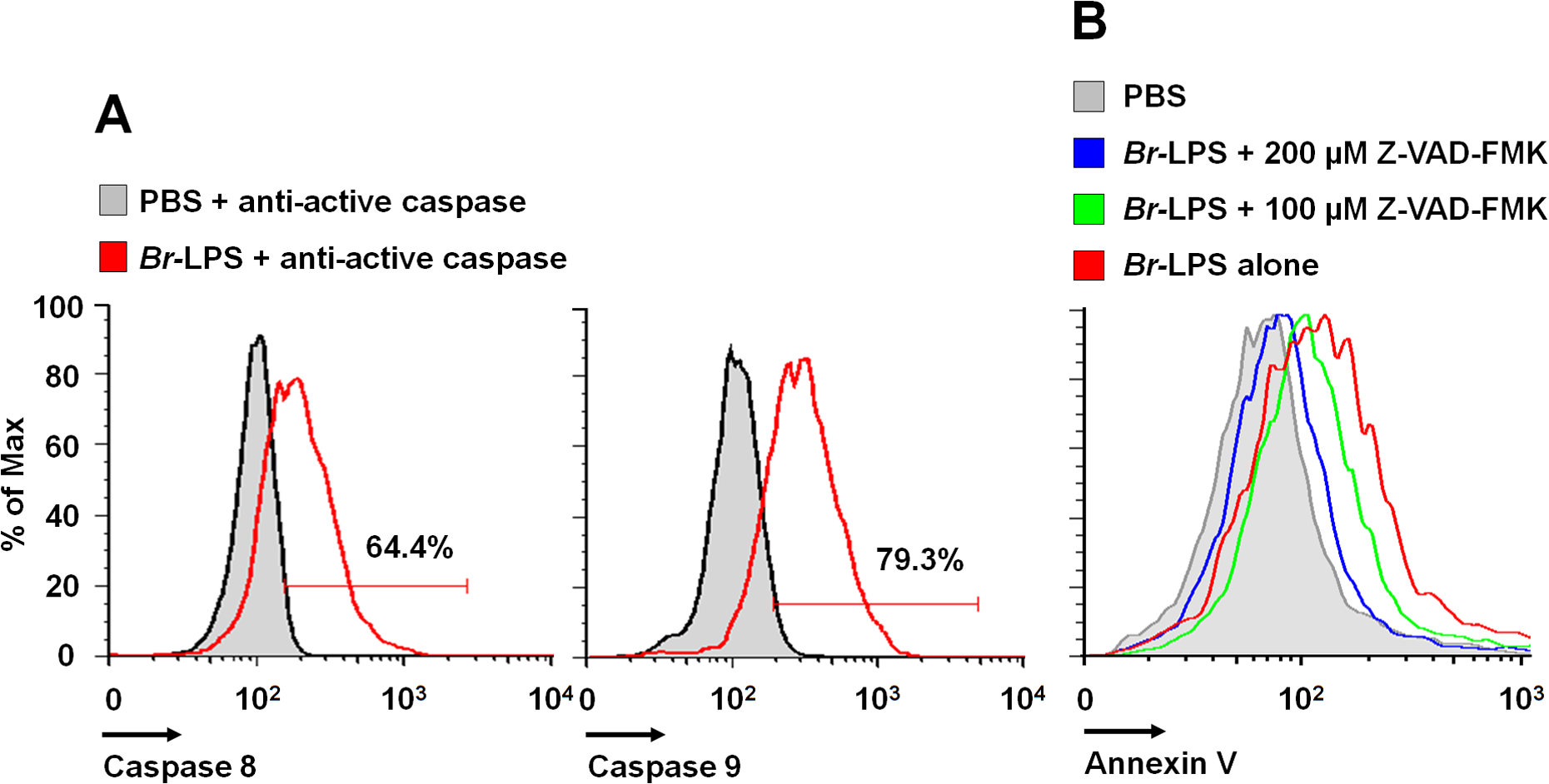 <i>Br-</i>LPS induces activation of caspase 8 and 9 in PMNs.