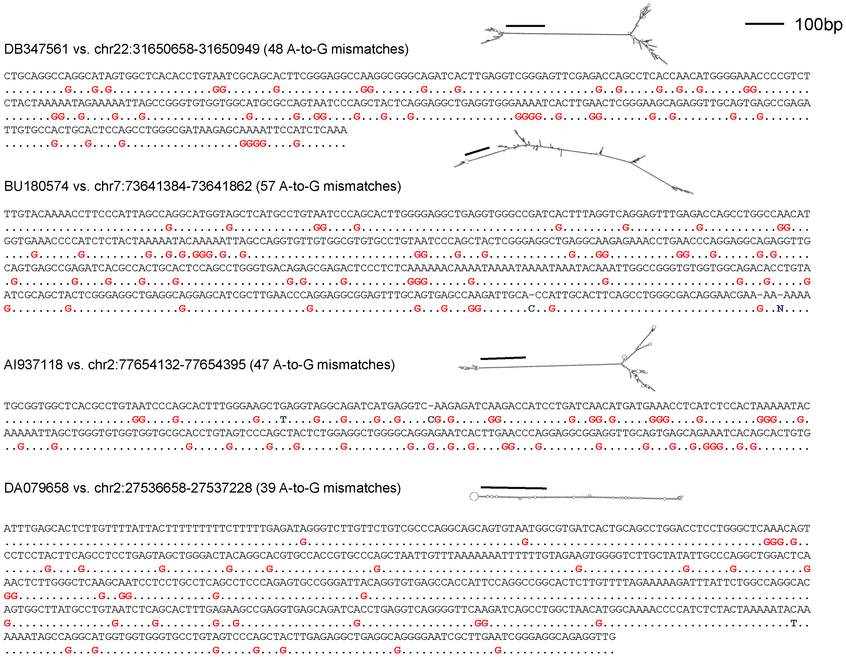 The alignment of typical ultra-edited RNAs to the genome.