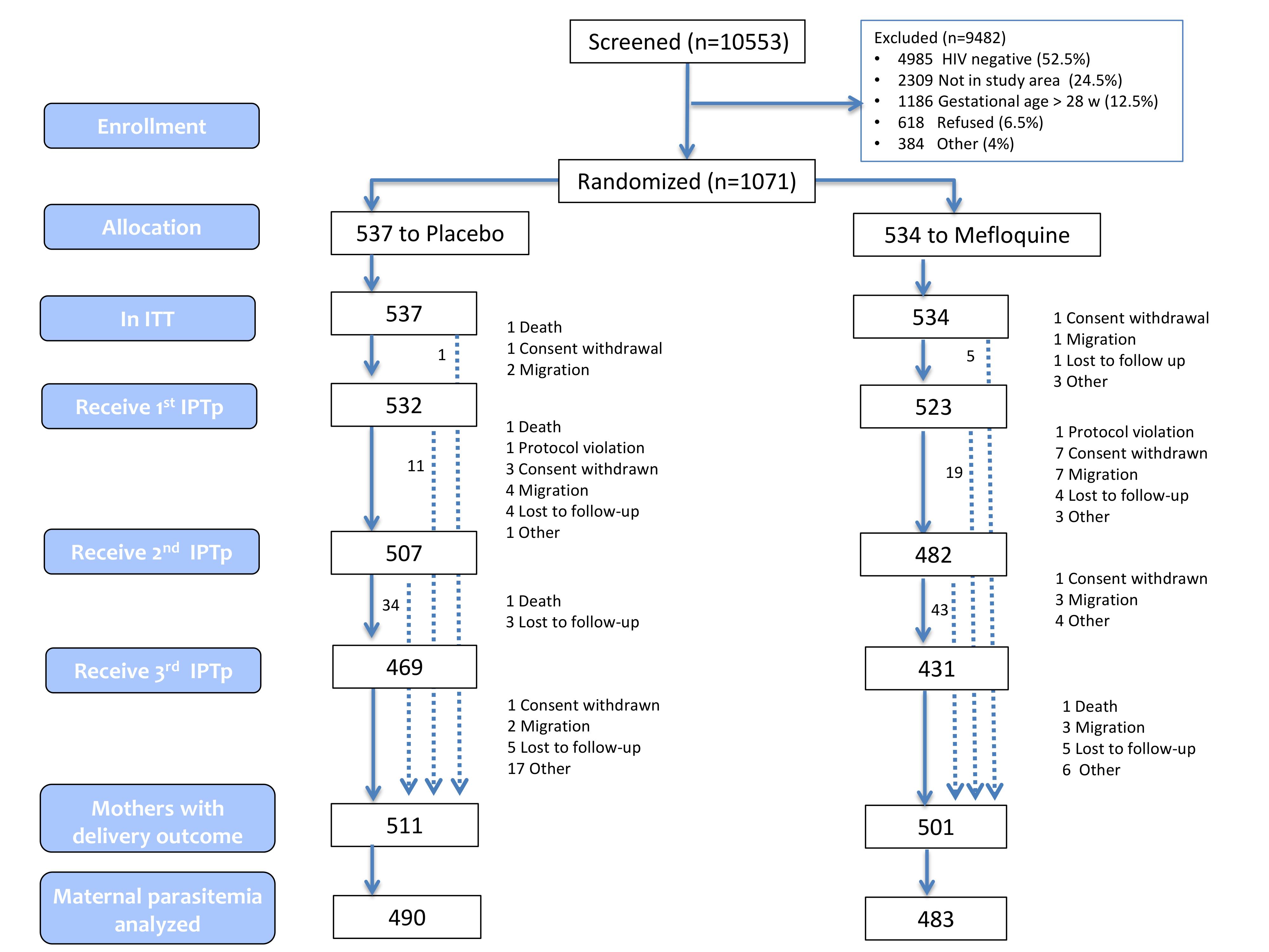 Trial profile (ITT cohort).