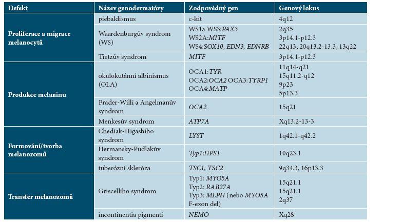 Přehled genodermatóz spojených s poruchami pigmentace