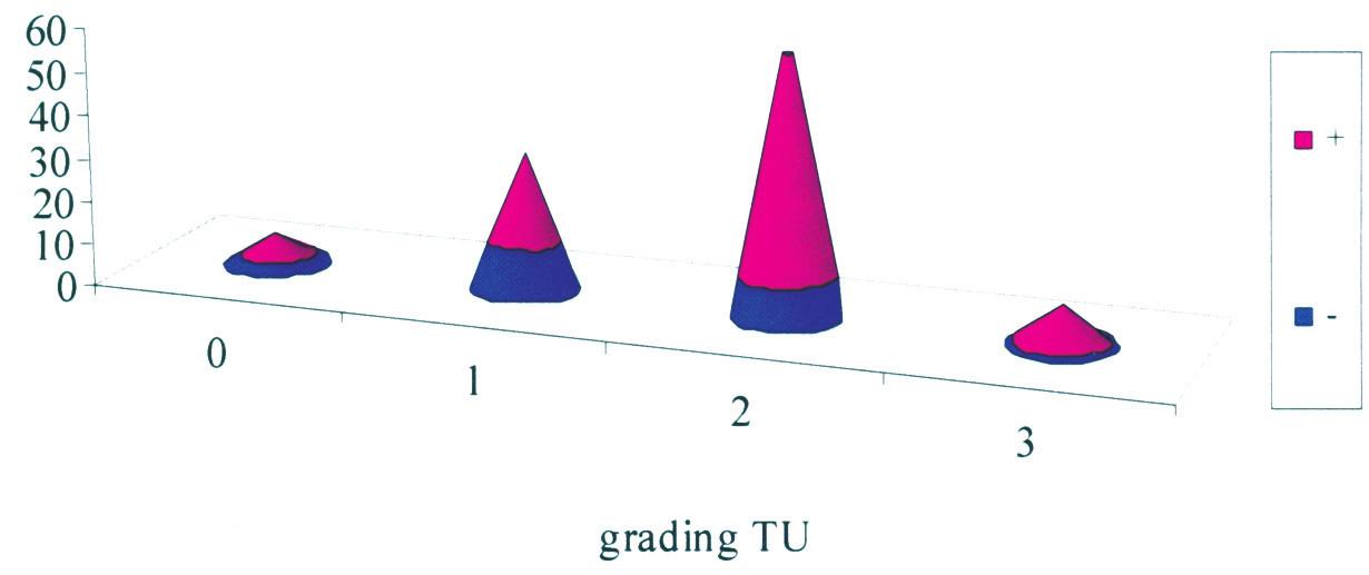 Lymfovaskulárna invázia a histologický grading tumoru (P < 0,01) Graph 3. Lymphovascular invasion and histological tumor grading (p < 0.01)
