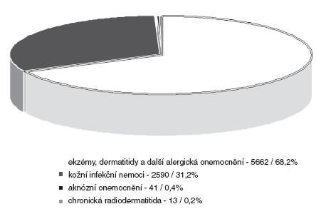 Profesionální dermatózy v období 1992–2004 – podle kapitol seznamu nemocí z povolání n = 8 306