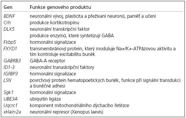 Některé cílové geny MeCP2 proteinu [9,60].